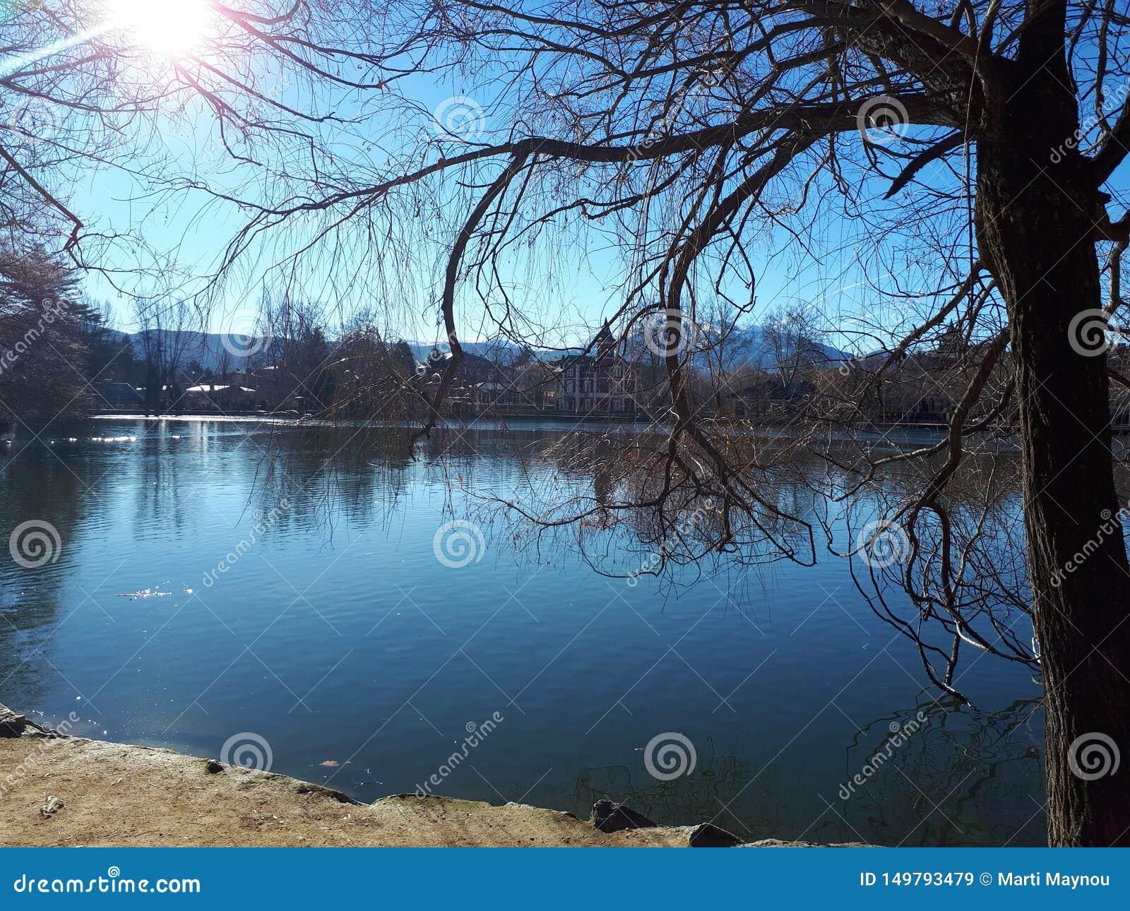 Reflexiones en el lago