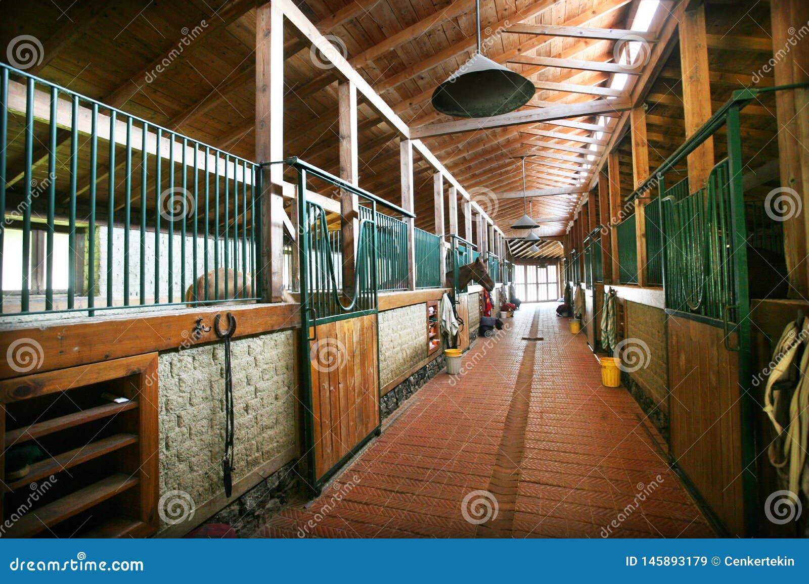 Refugio del caballo