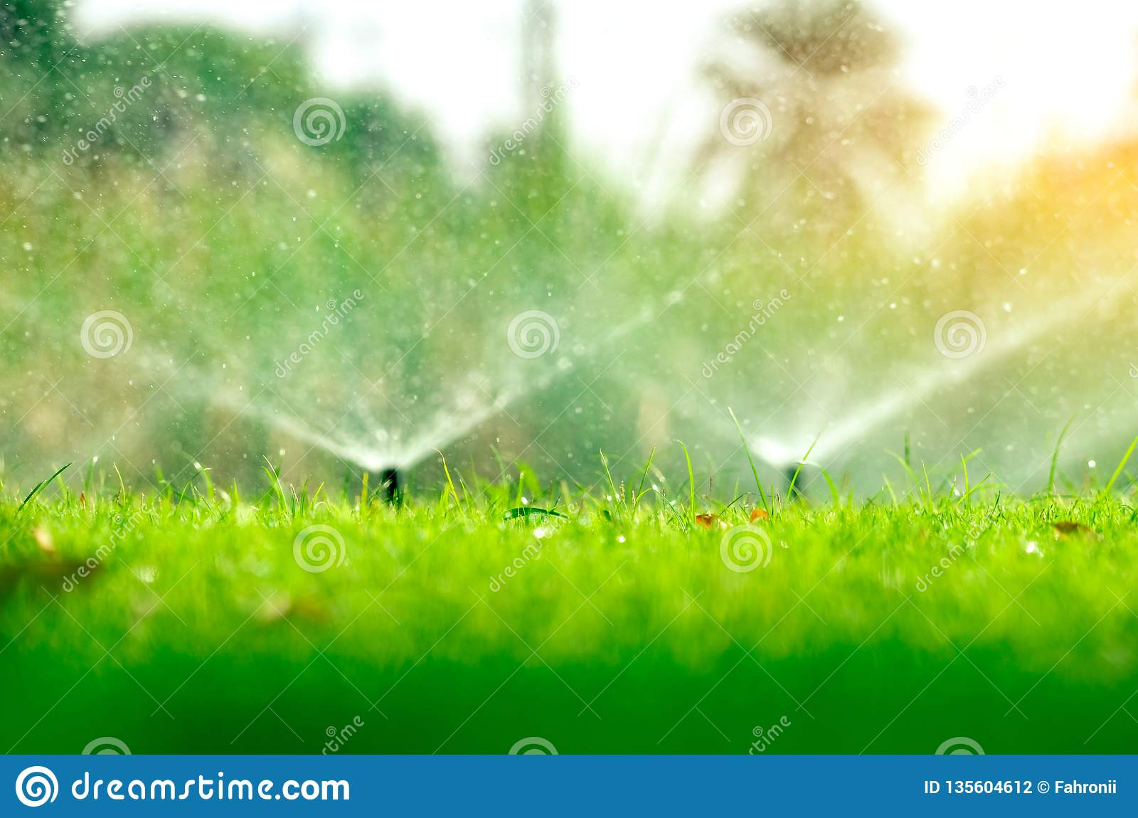 Regadera automática del césped que riega la hierba verde Regadera con el sistema automático Césped de riego del sistema de irriga