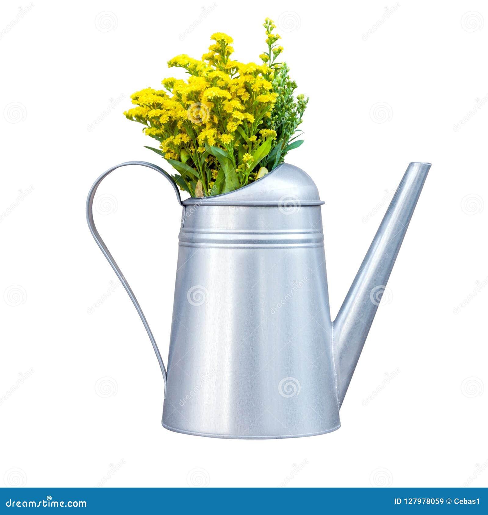 Regadera decorativa del metal con los wildflowers amarillos aislados