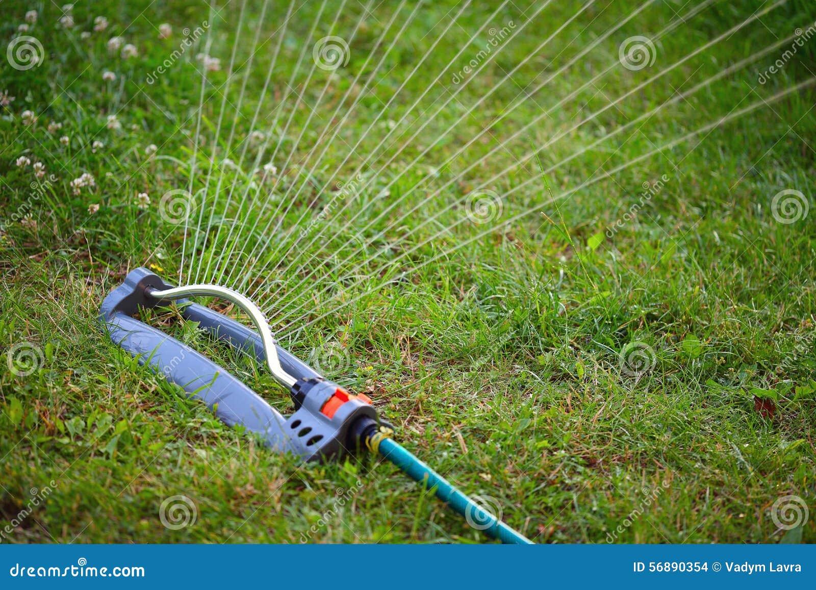 Regadera del agua para el jard n foto de archivo imagen for Mezcladora de agua para regadera