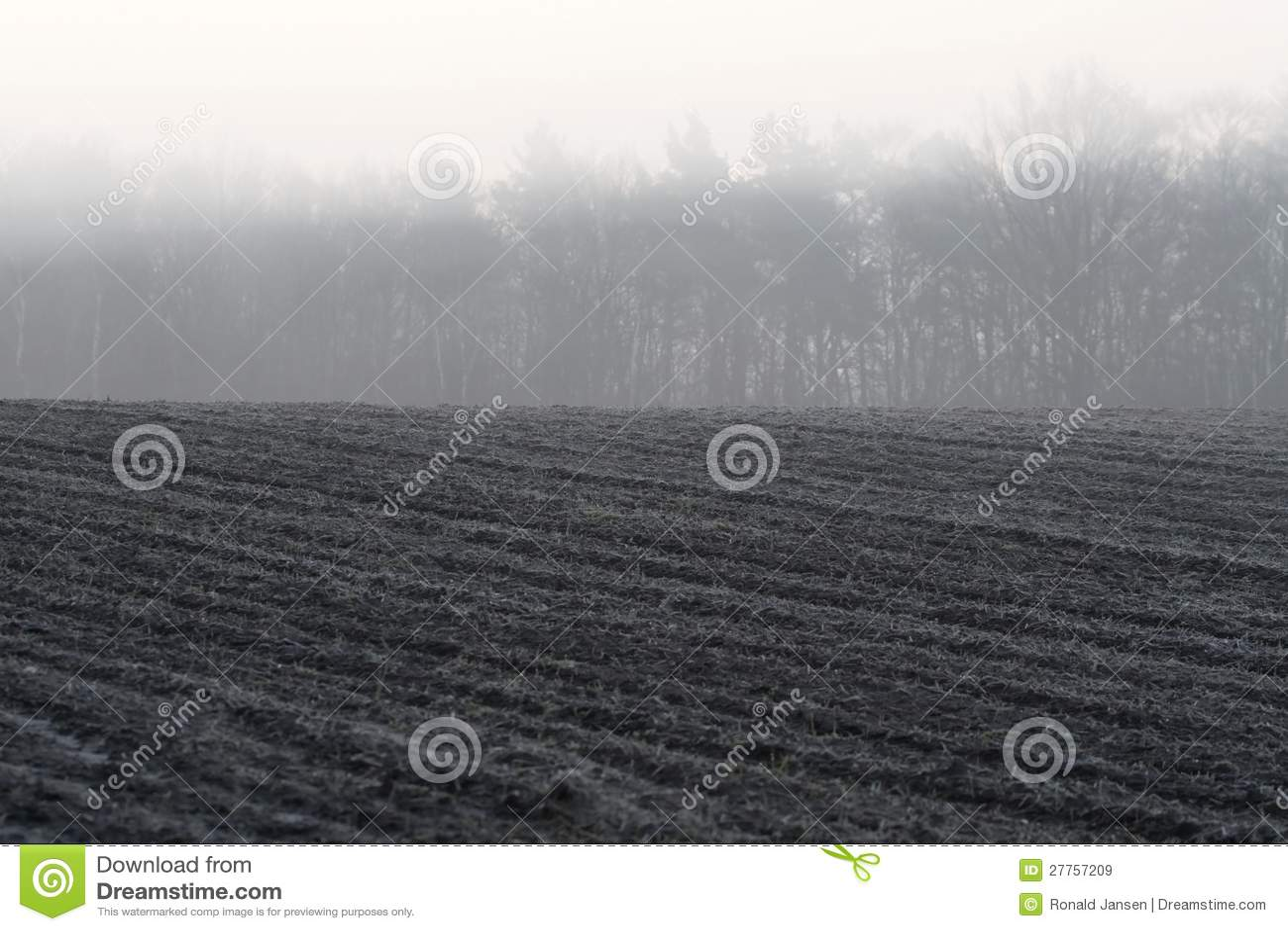 Regain de matin au-dessus des terres arables
