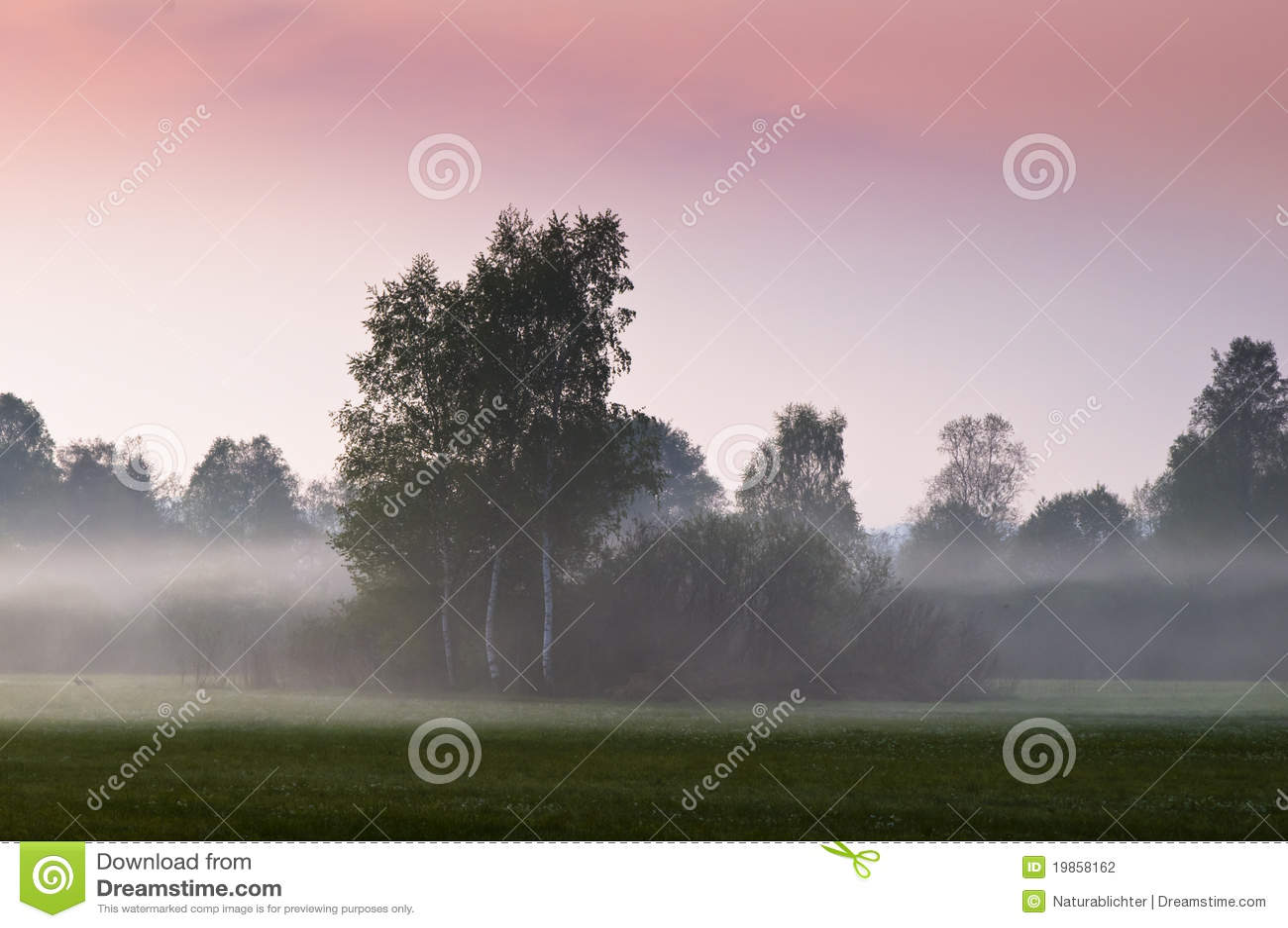 Regain de matin sur la zone ouverte