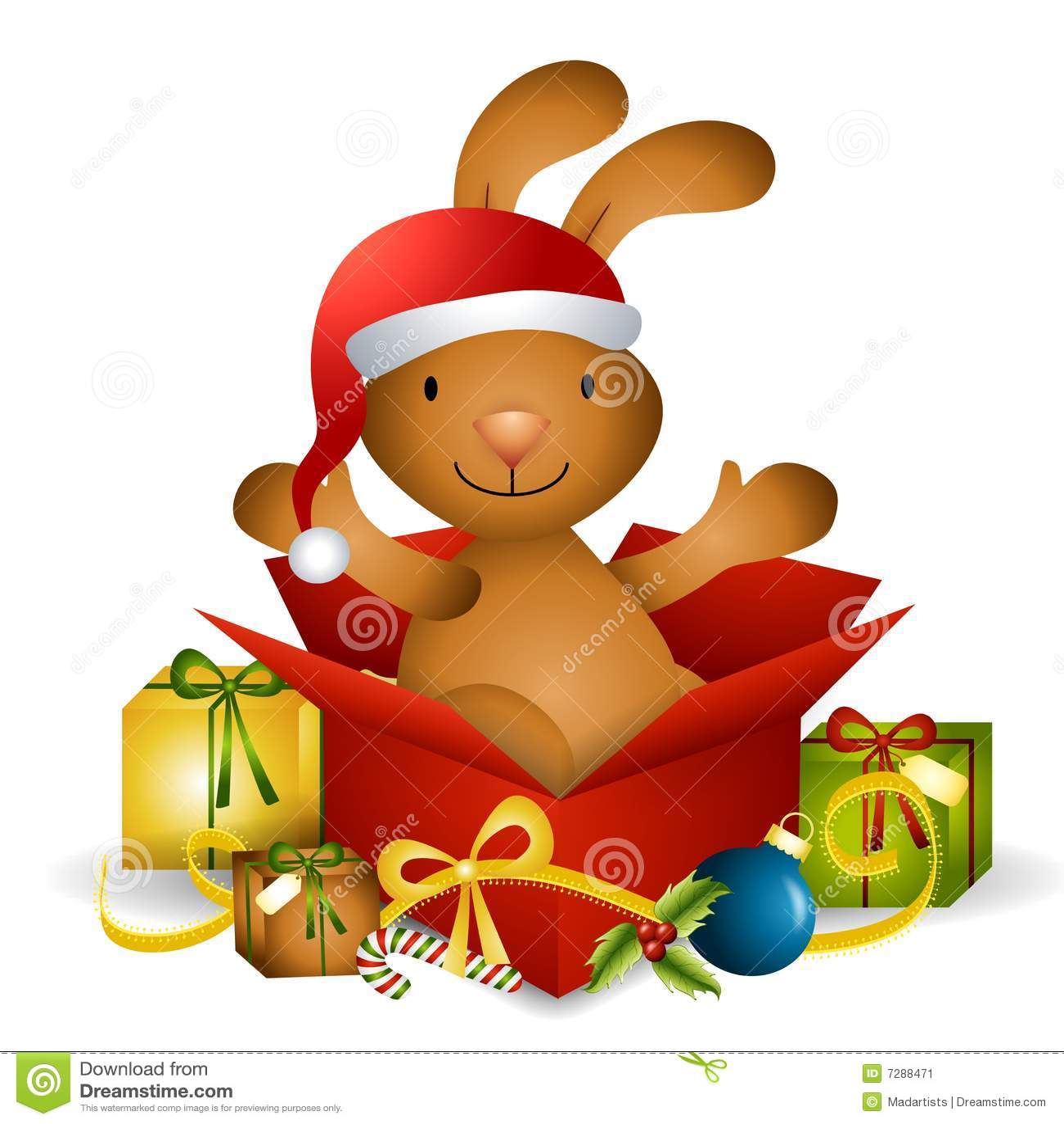Regalo de Navidad del conejito