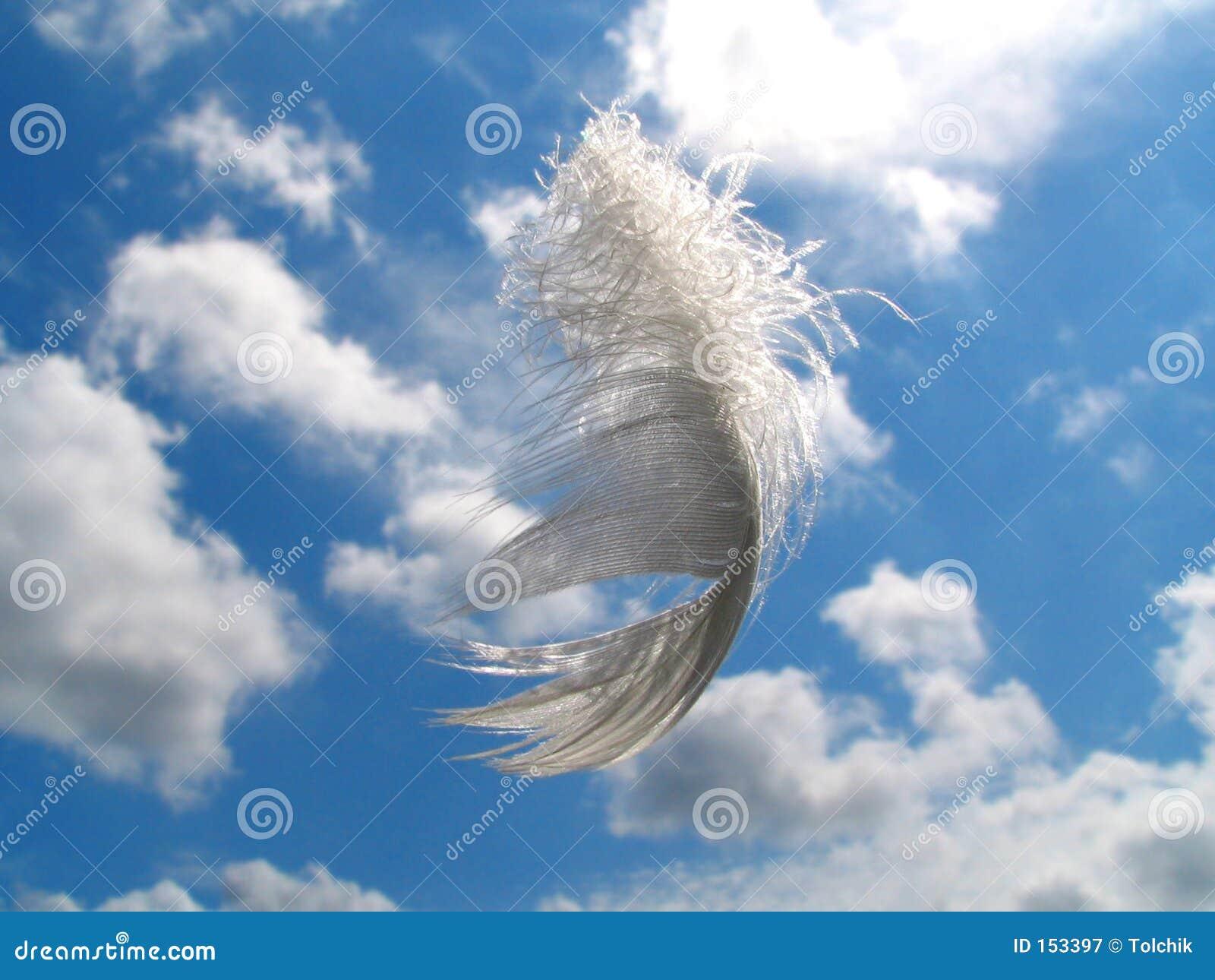 Regalo del ángel