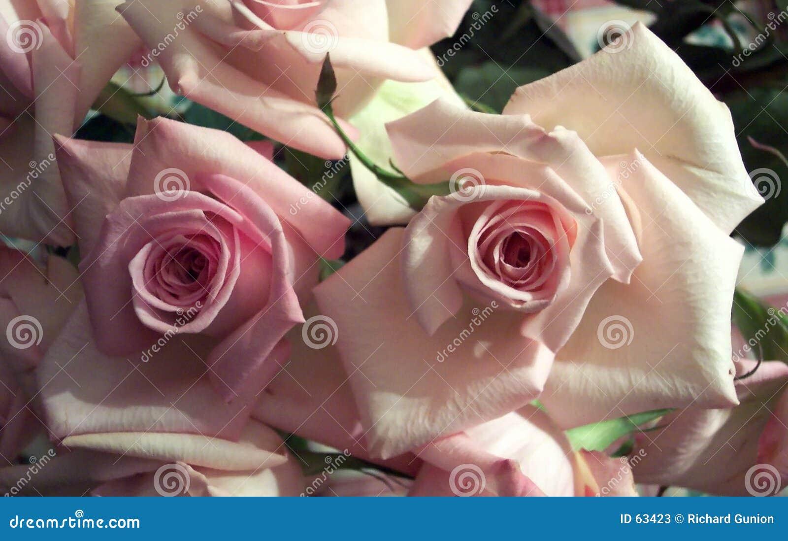 Regalo del día de tarjeta del día de San Valentín