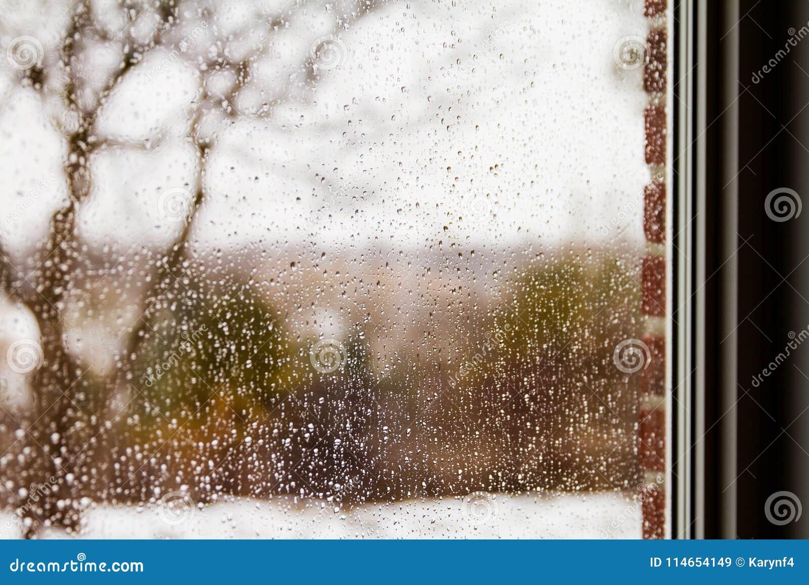 Regarder une forêt par la pluie chute sur un carreau de fenêtre