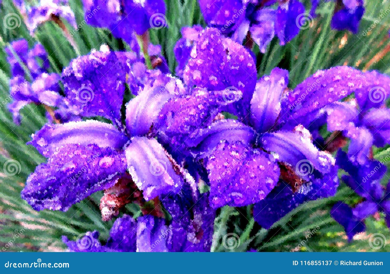 Regen getränkte Iris Flowers Painting