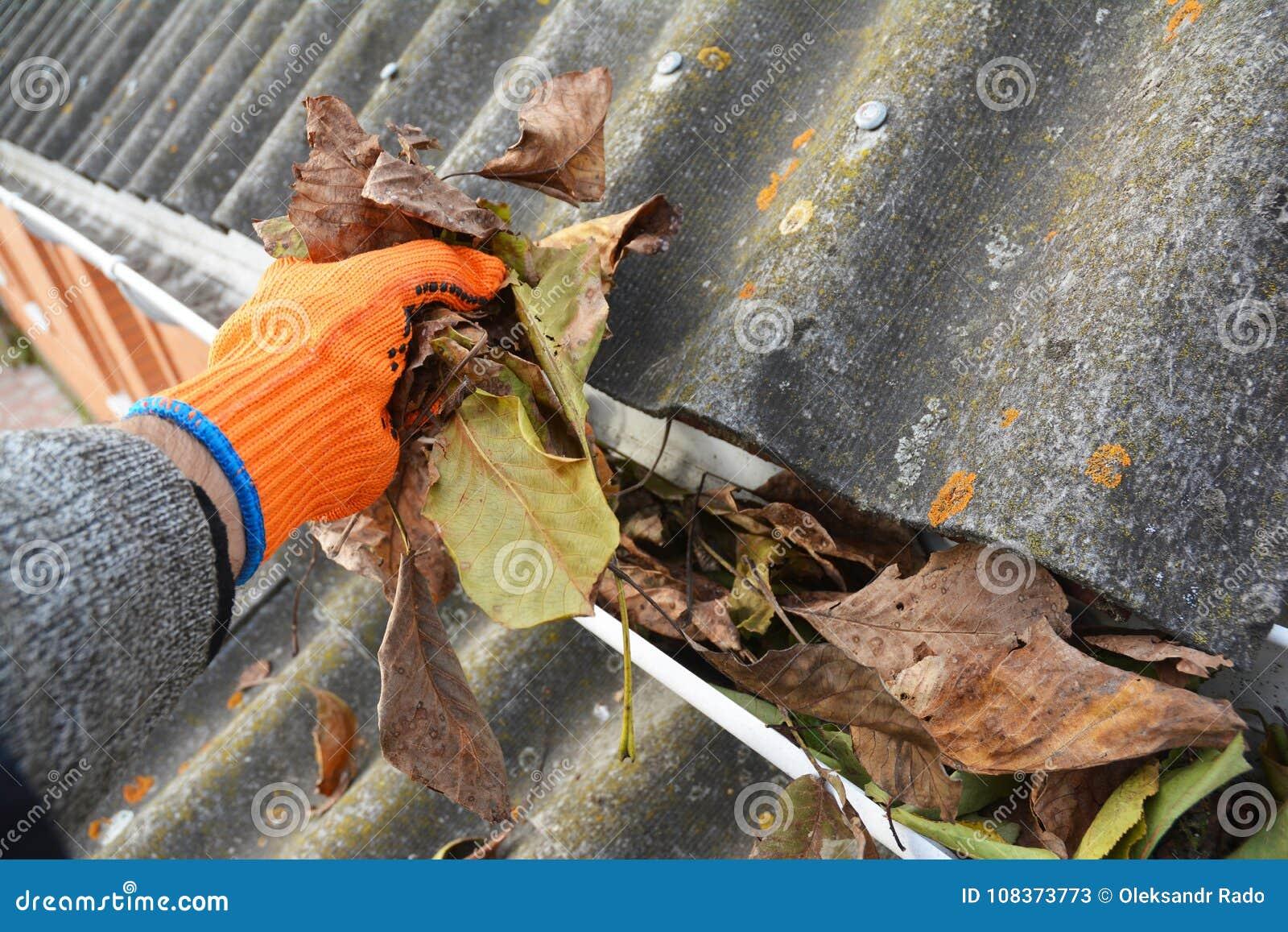 Regen-Gossen-Reinigung von den Blättern im Herbst Dach-Gosse Cleanin