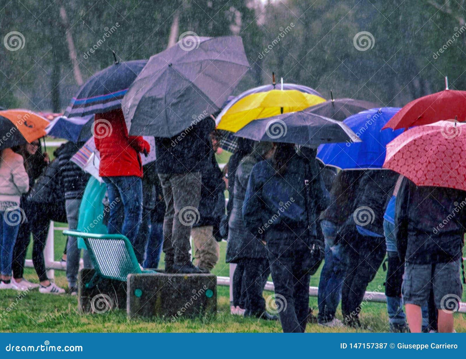 Regen, mensen die op een jeugdig spel van modder en regen enkel letten om hun kinderen te volgen