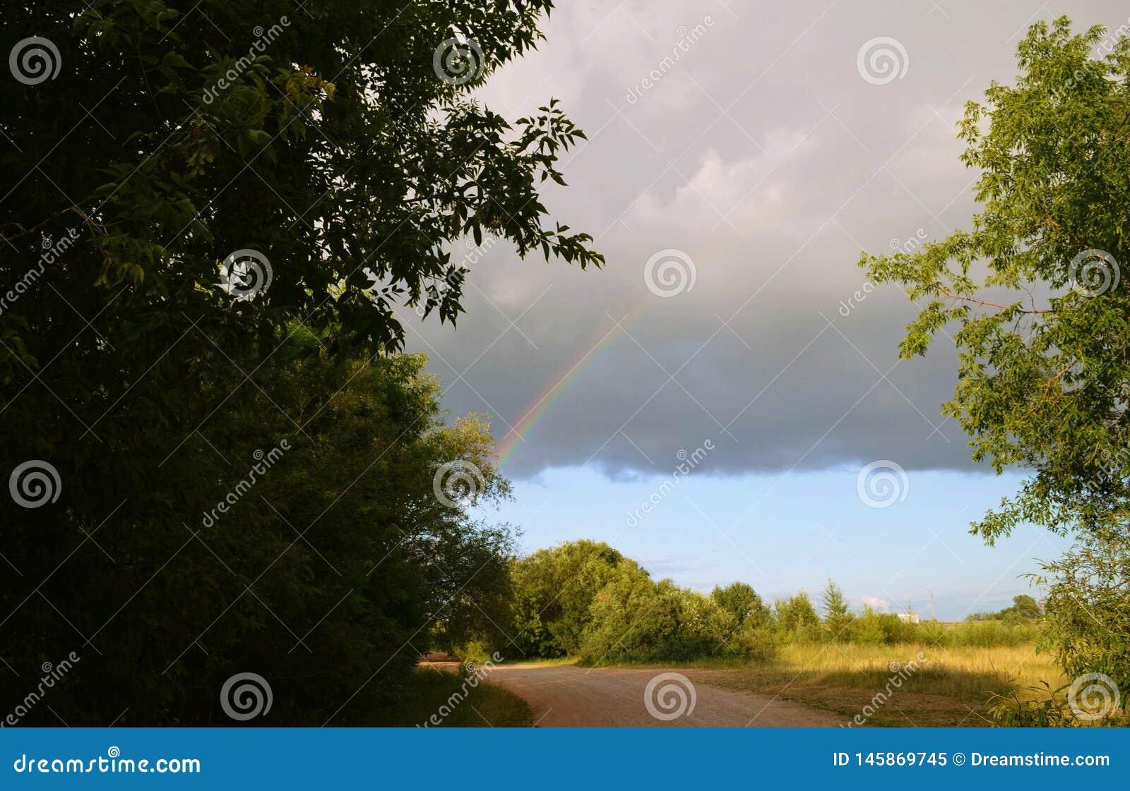 Regenboog na een sterke paddestoelregen