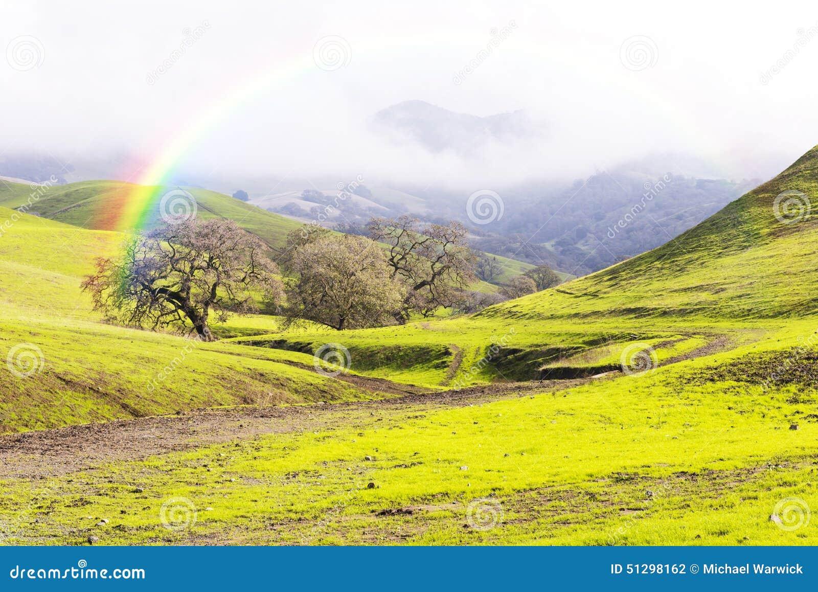 Regenboog over Groene Heuvels en Weiden in de Lente