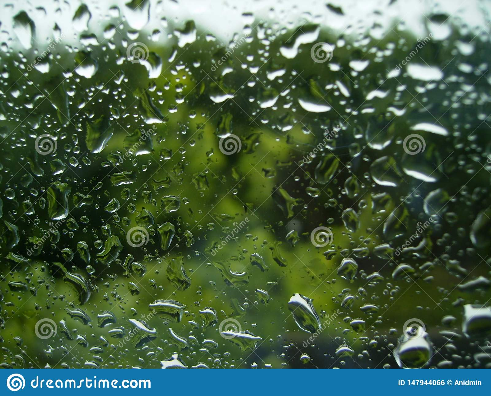 Regendruppels bij het venster op de groene achtergrond van bomen