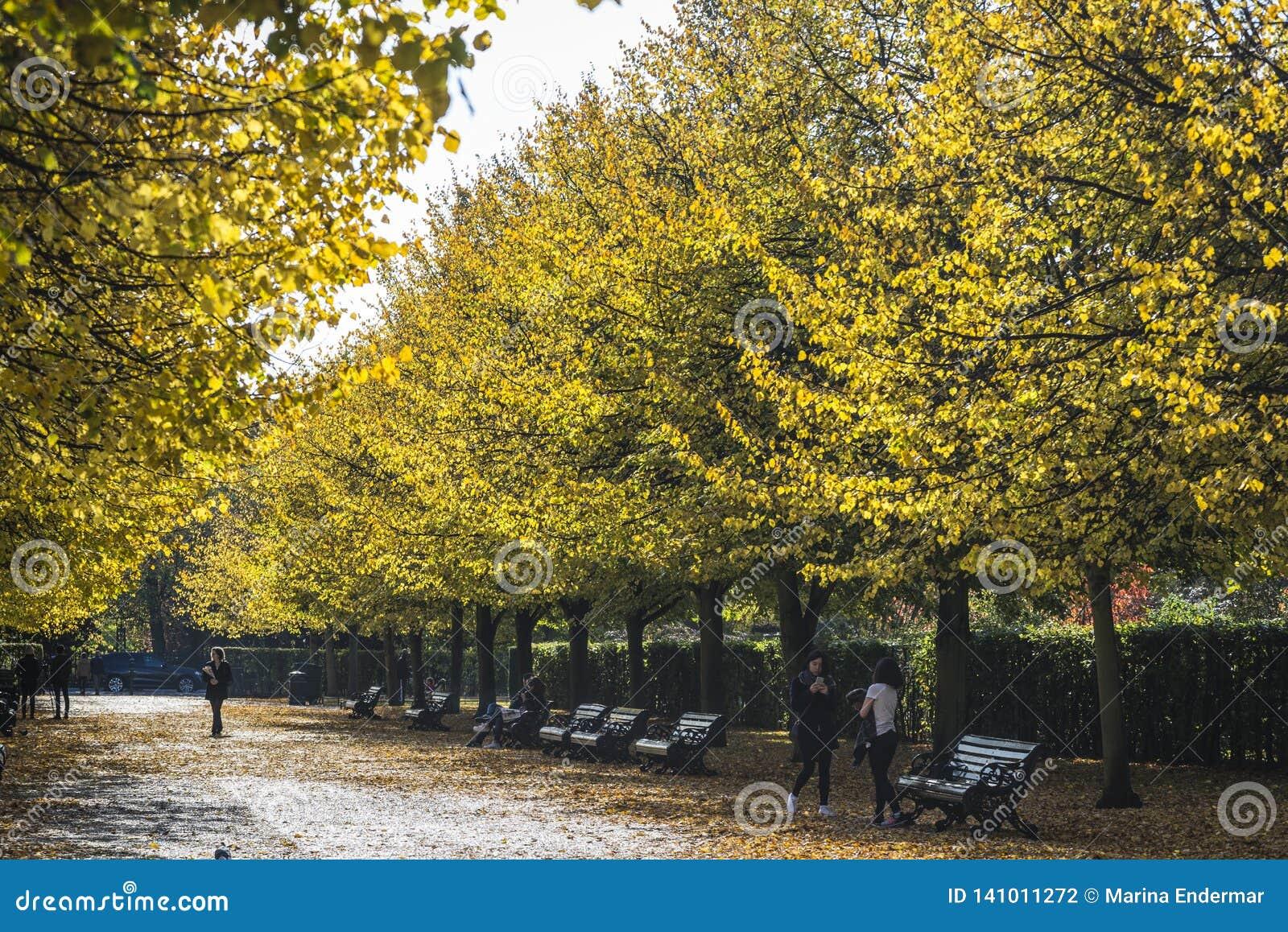 Regent s Park en automne, Londres, R-U