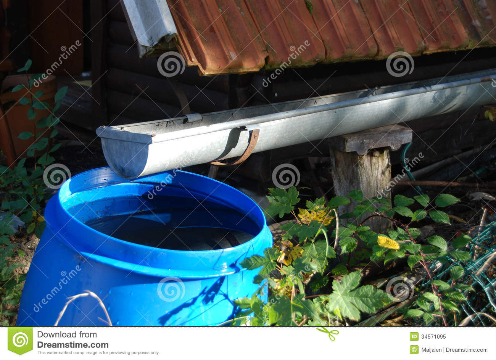 Regenwasser für die Bewässerung des Gartens sammeln