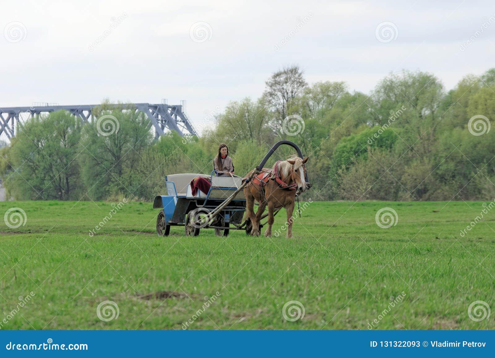 Região de Vladimir, Rússia - 6 de maio 2018 Carros do táxi a cavalo para o transporte dos peregrinos da estação à igreja
