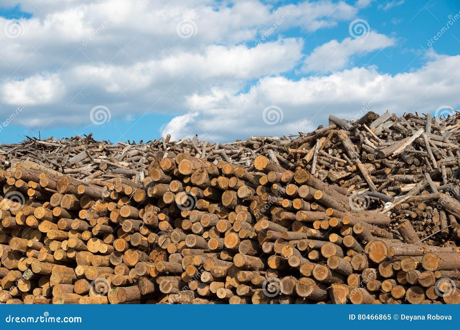 Registrar Natureza destrutiva da indústria