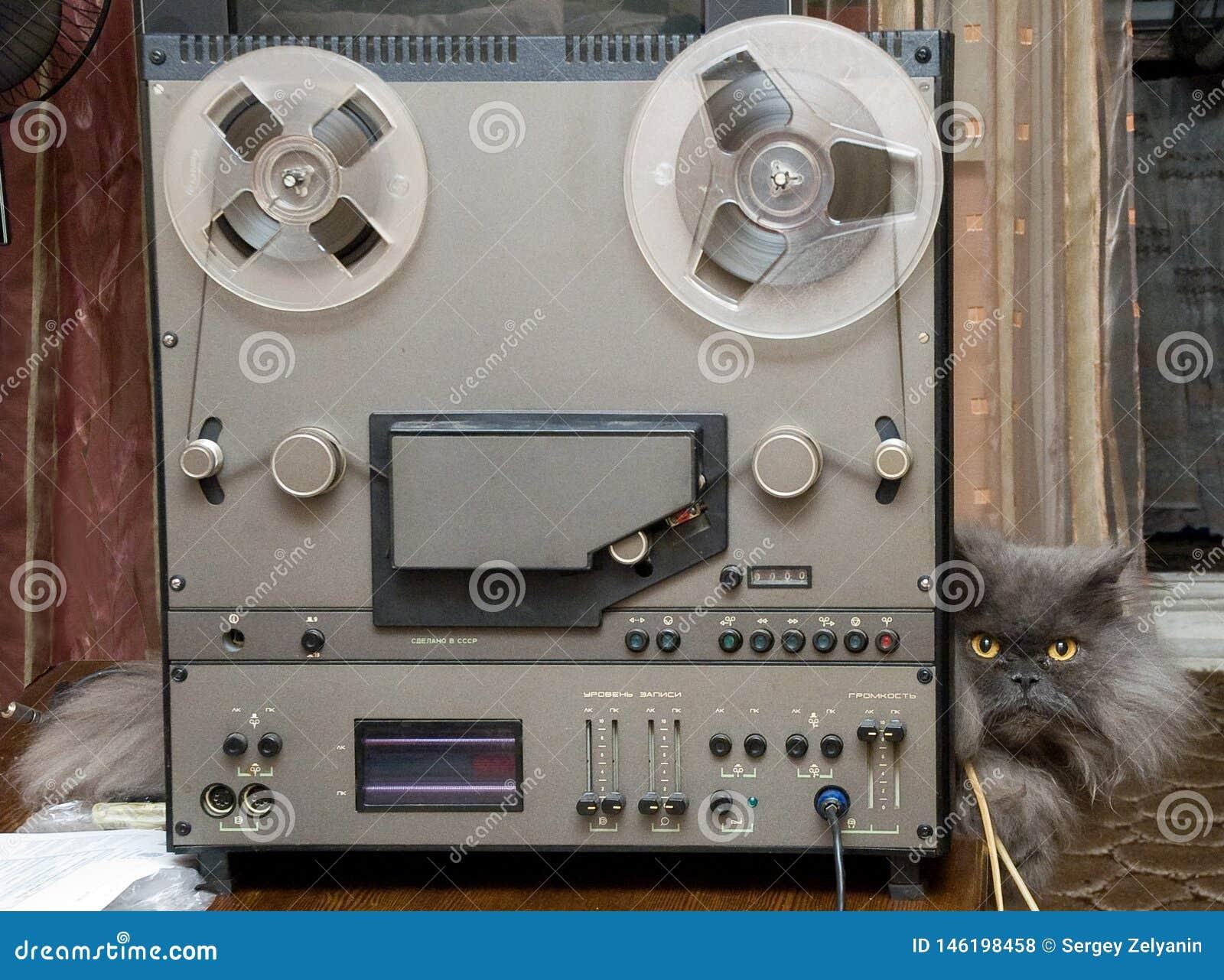 Registratore e gatto stereo ad alta fedeltà