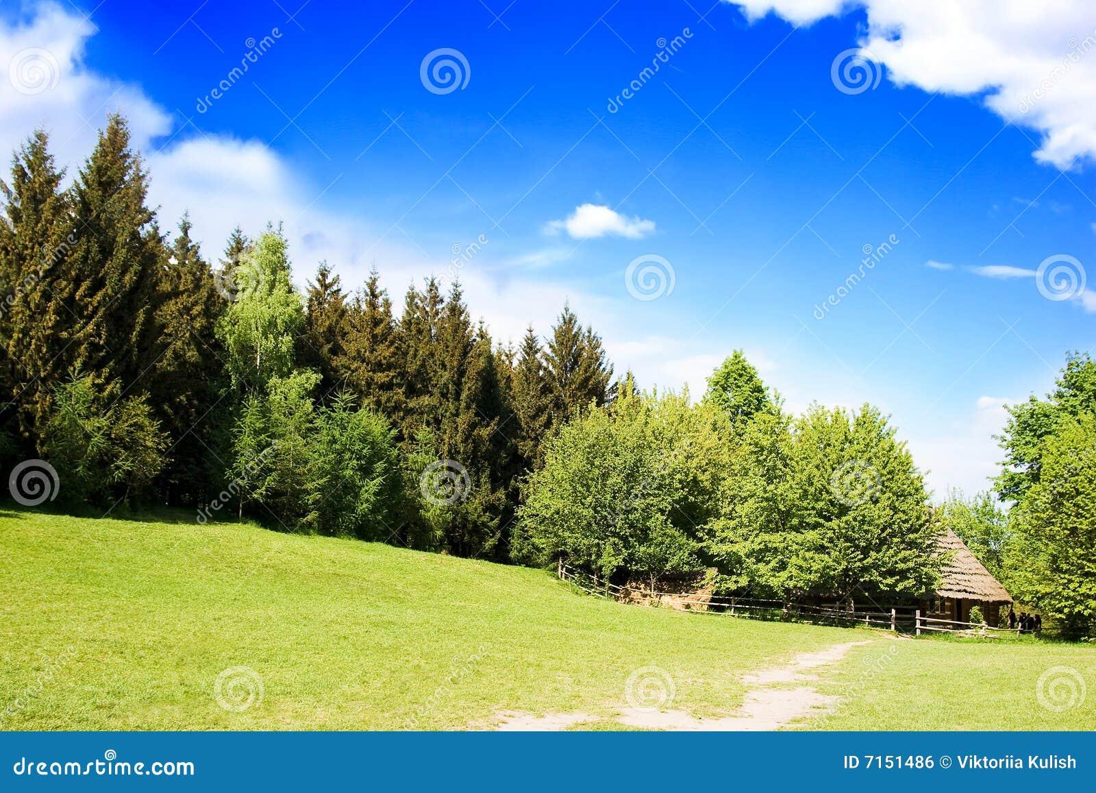 Registro-casa rural en bosque