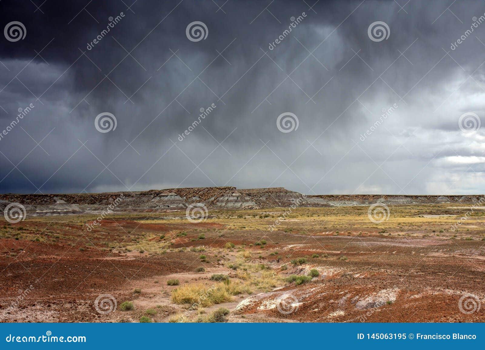 Regn över den målade öknen i Arizona
