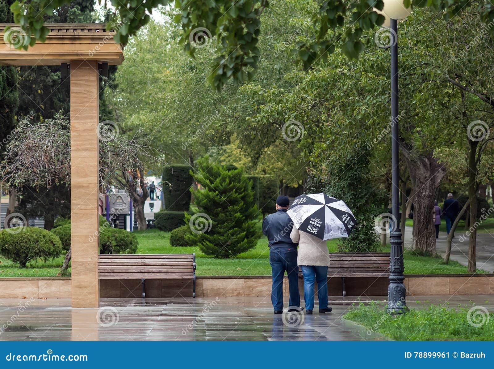 Regnig höstdag