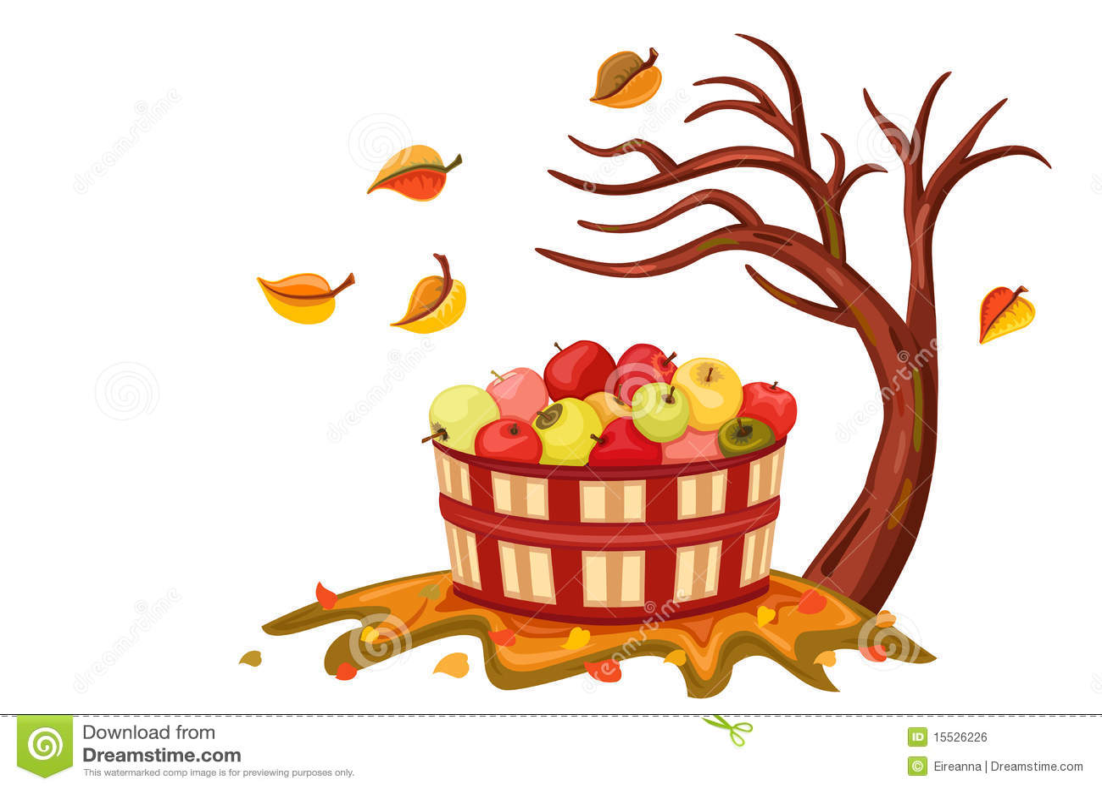 Reiche Apfelernte im Herbst