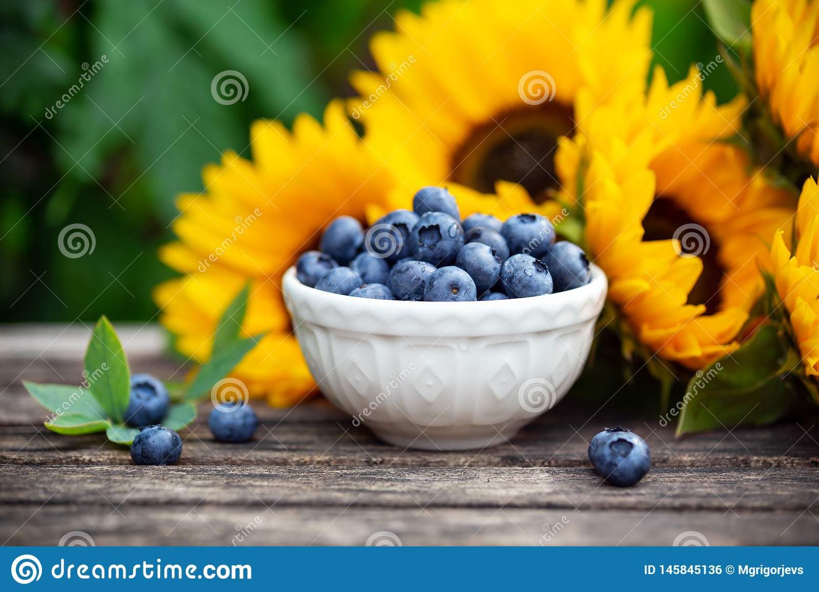 Reife Blaubeeren in der wei?en Sch?ssel mit Sonnenblumenblumenstrau? auf Holztisch, Sommerthema