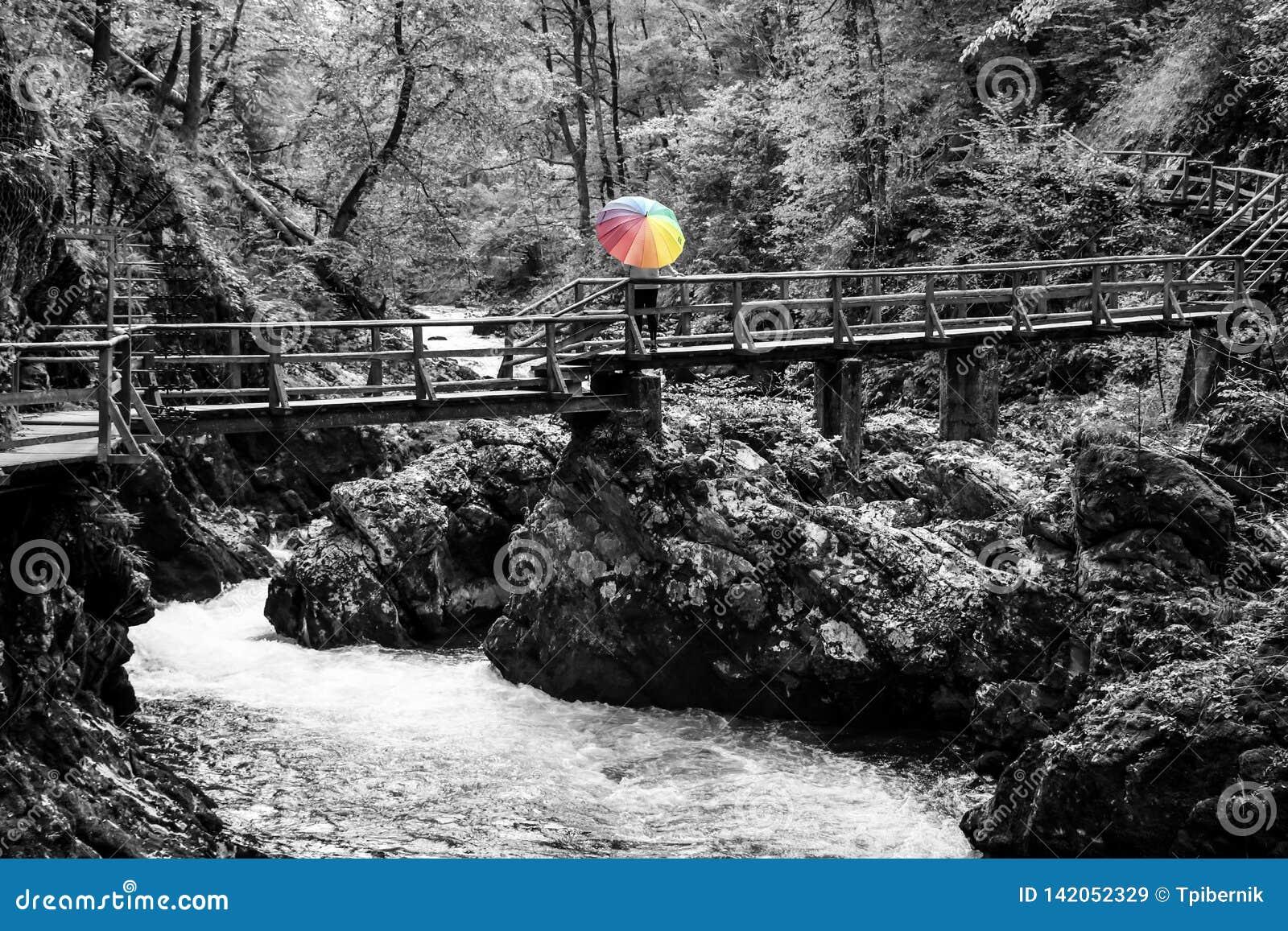 Reife Frauenstellung auf einer Holzbr?cke ?ber Fluss mit buntem Regenschirm an einem sonnigen Herbsttag
