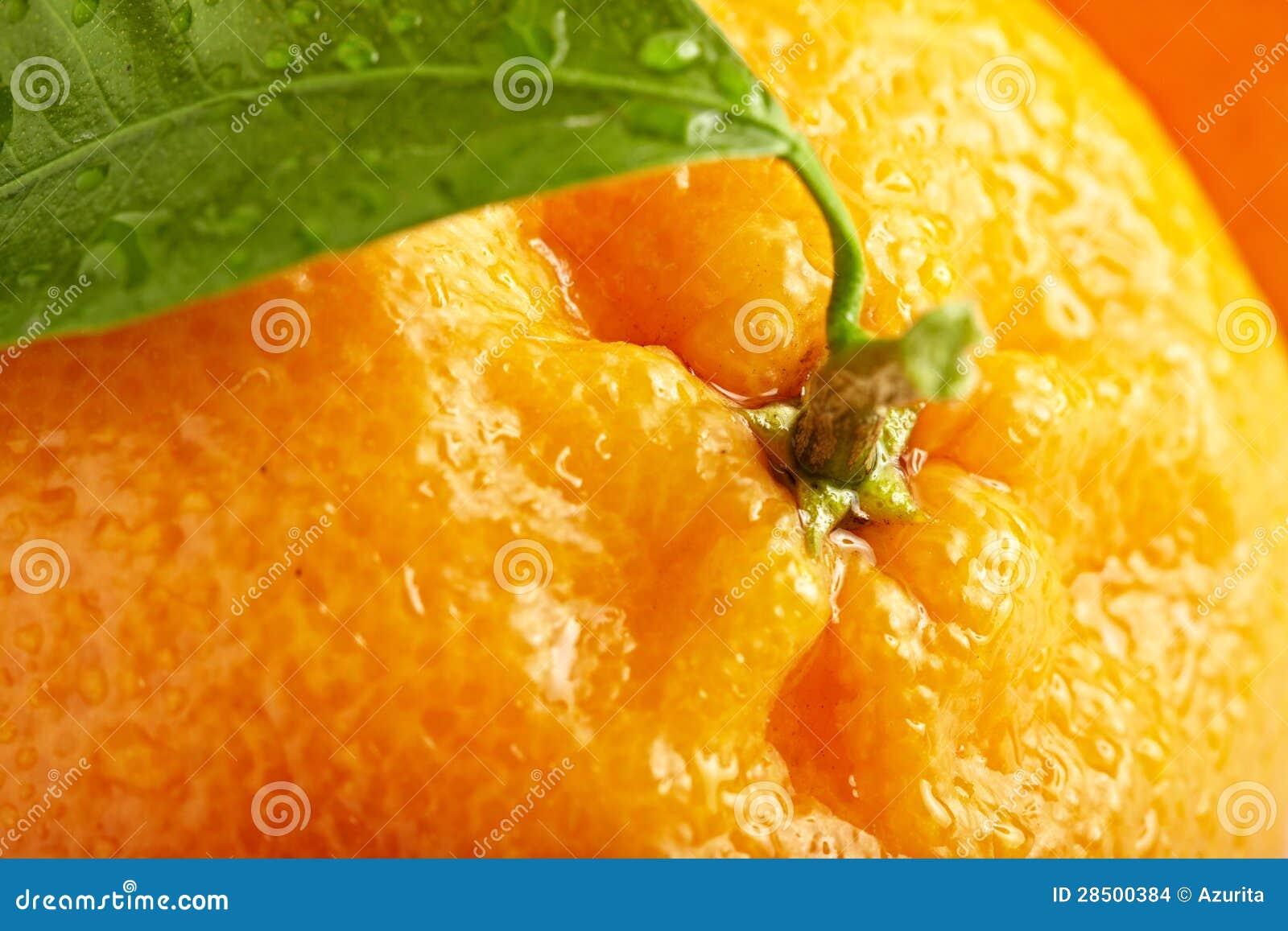 Reife Orange mit Blättern