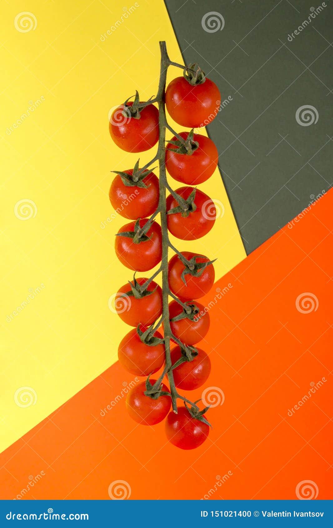 Reifer roter Cherry Tomatoes auf farbigem Hintergrund
