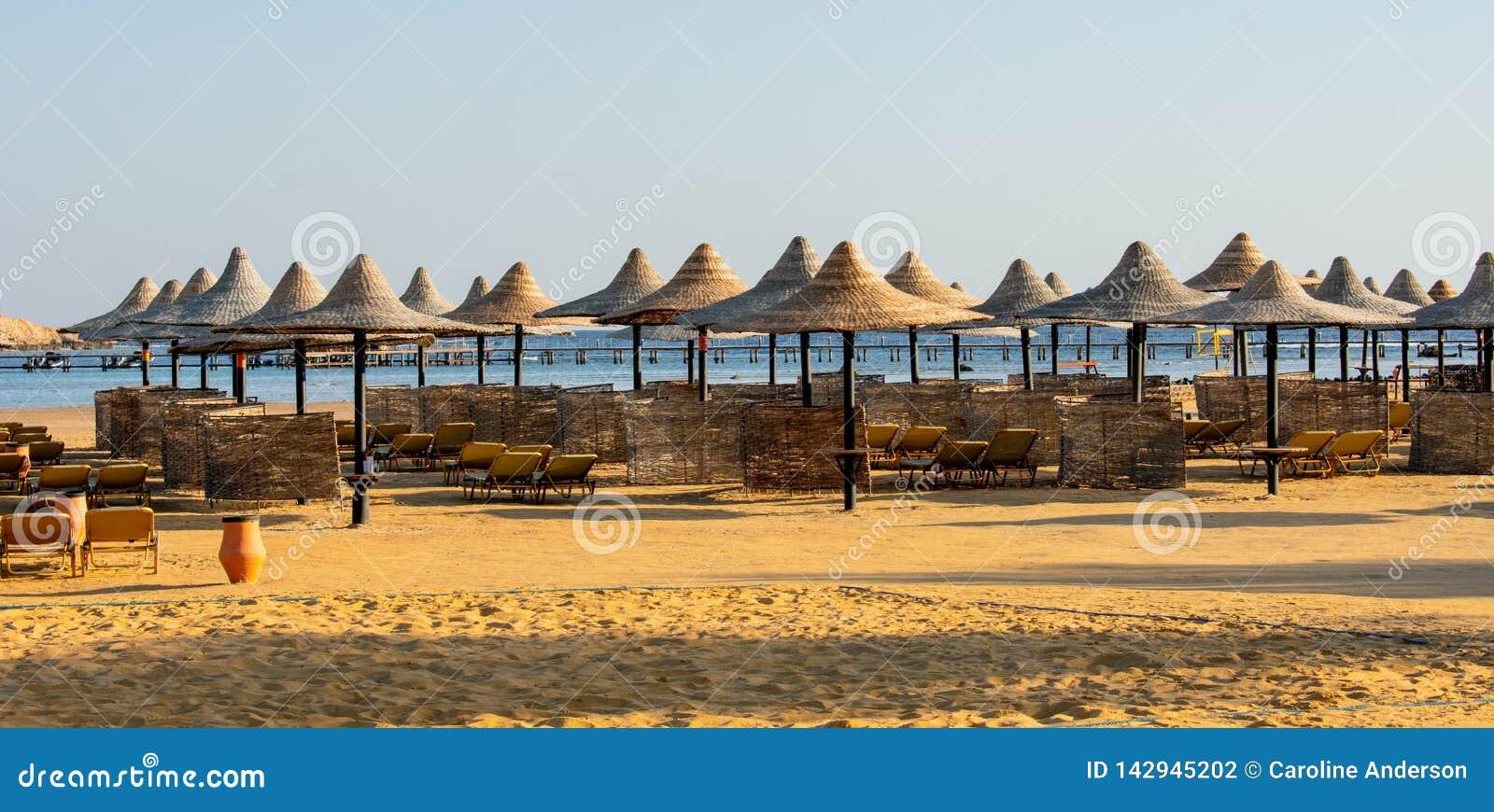 Reihen von Sonne Sonnenschirmen und sunbeds auf dem Strand