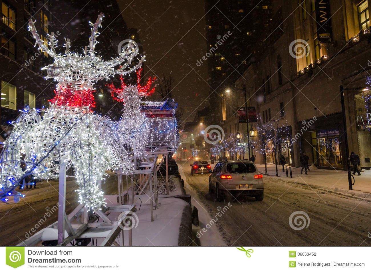 Christmas In Toronto Canada.Reindeer And Sleigh During A White Christmas In Toronto