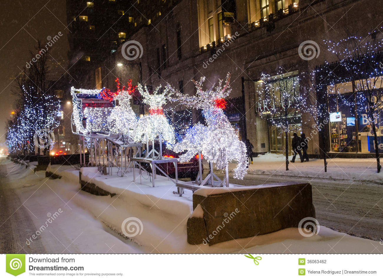 White Christmas In Canada.Reindeer And Sleigh During A White Christmas In Toronto