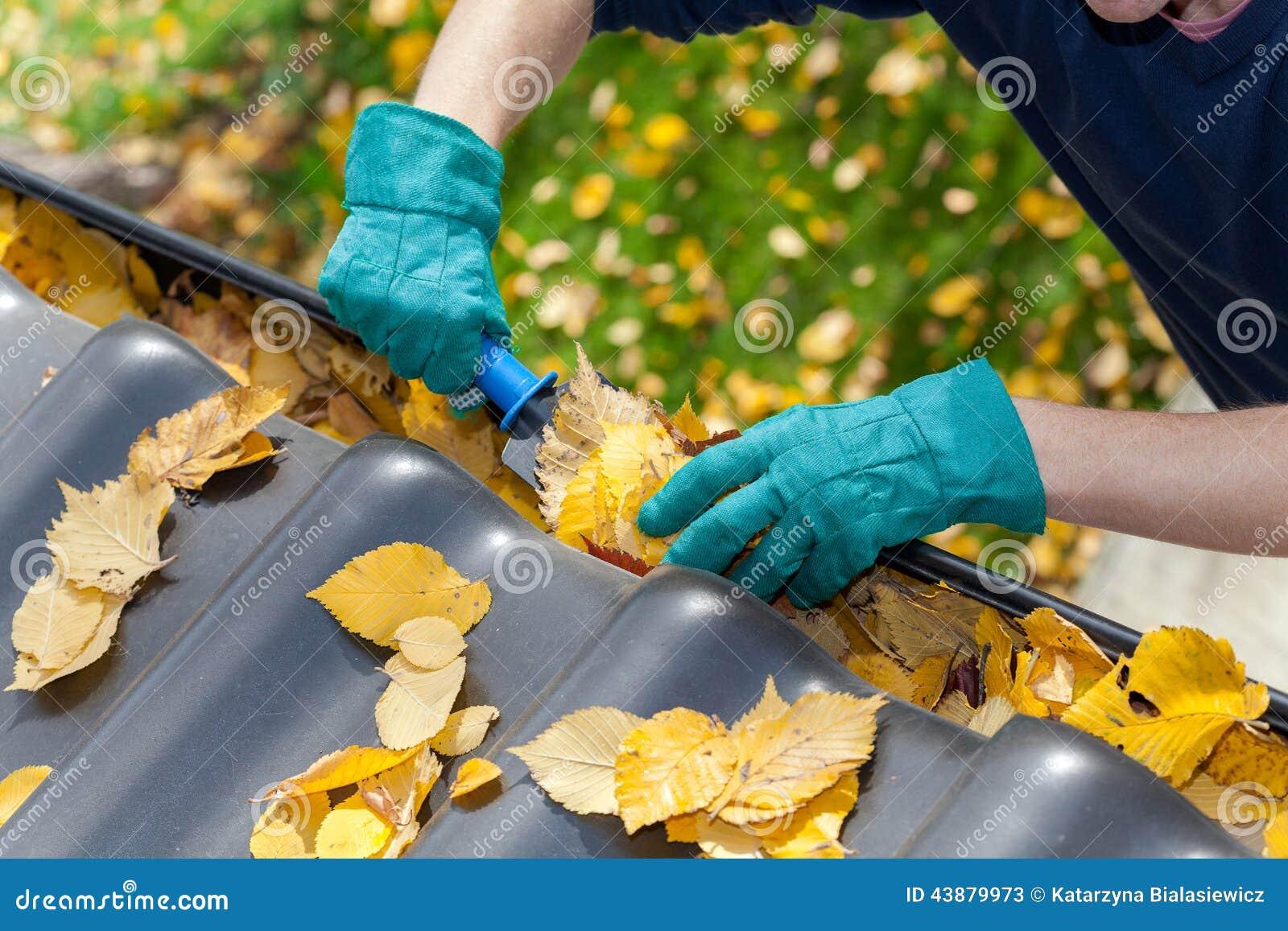 Reinigungsgossen von den Blättern
