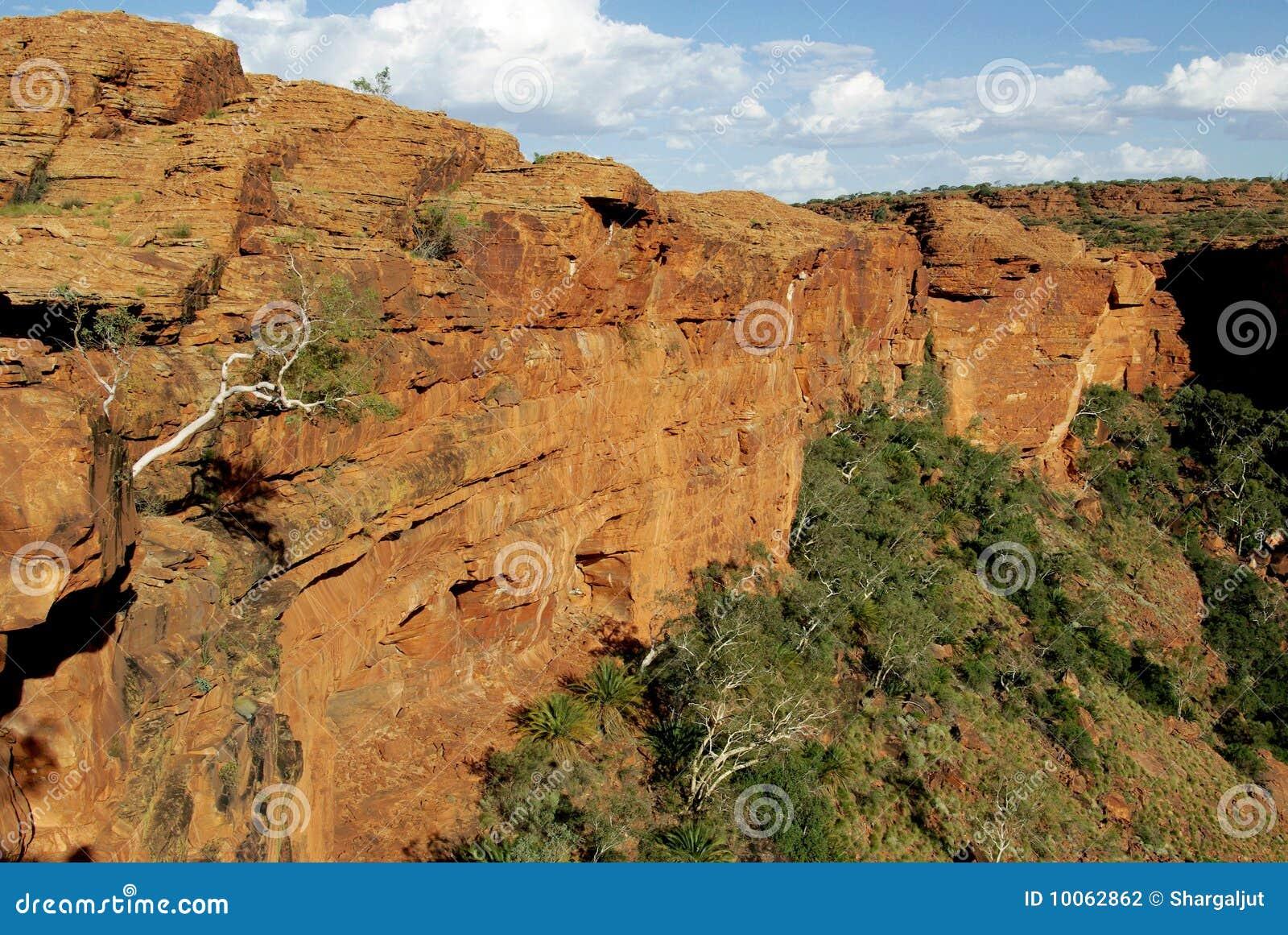 Reis Garganta, Austrália