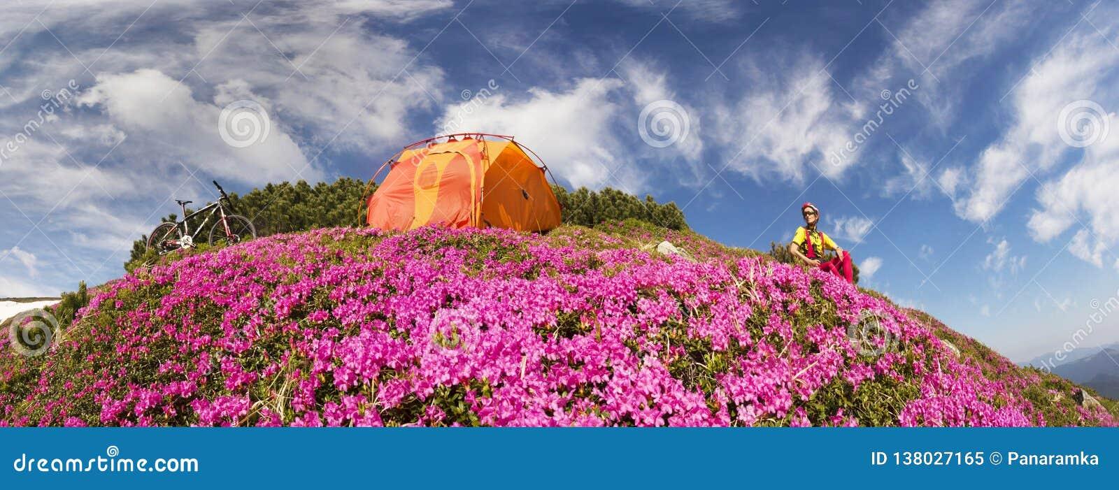 Reis met bloem de Karpaten