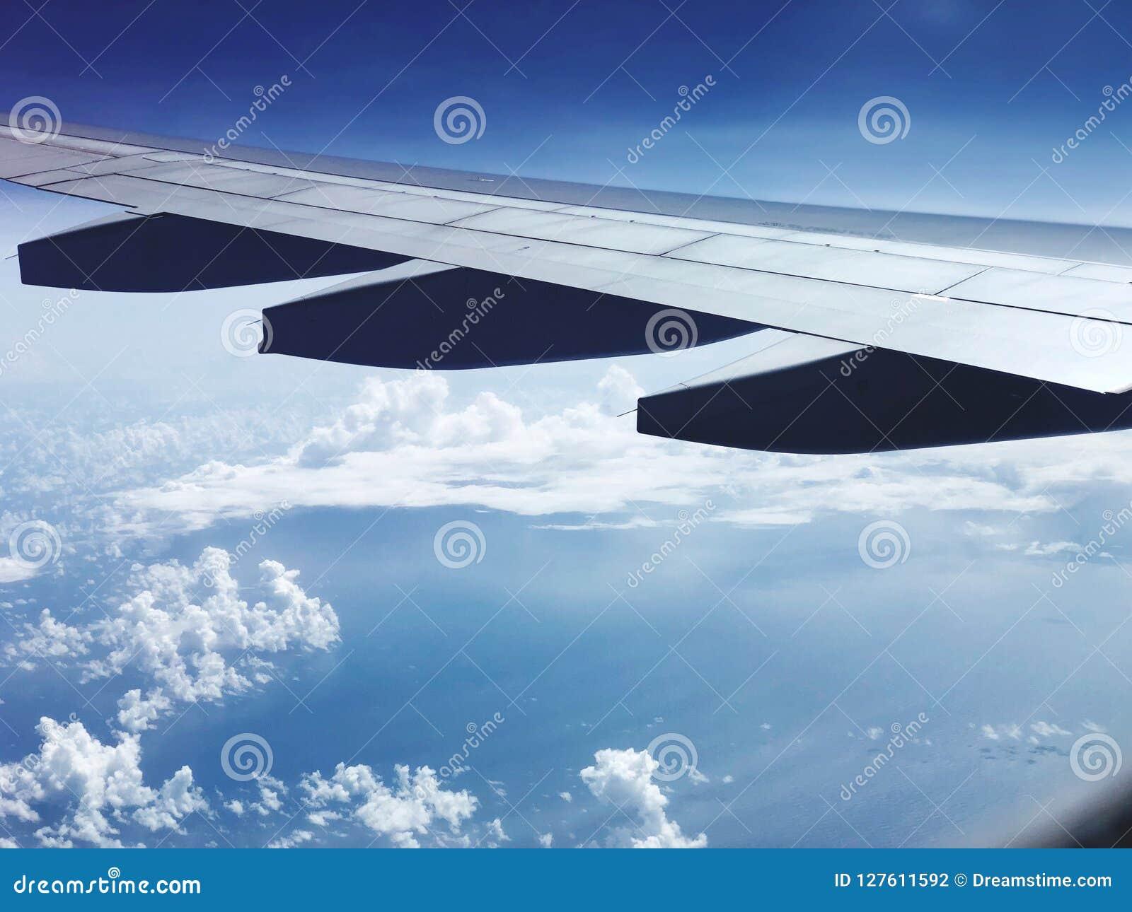 Reise in der Luft