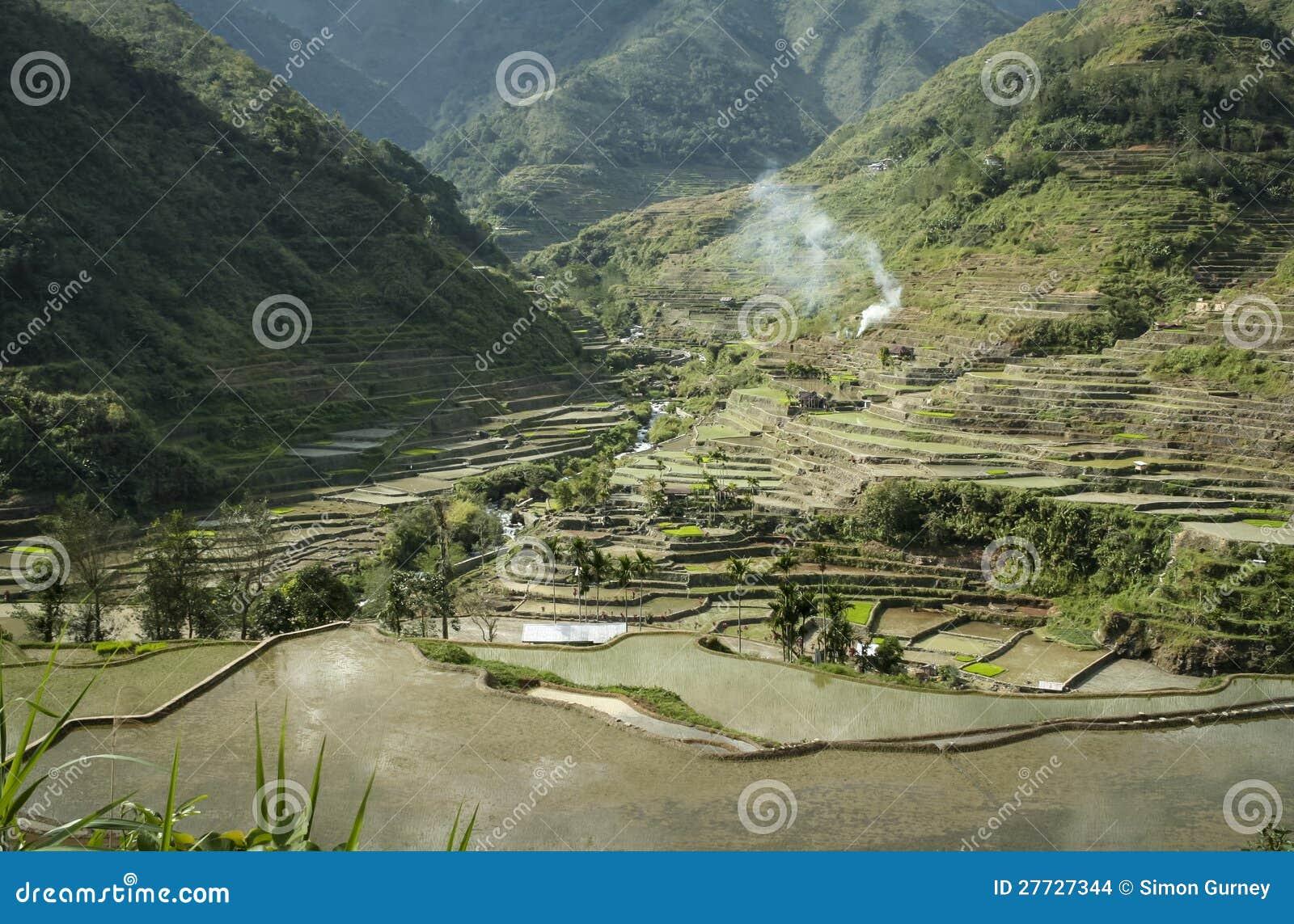 Reisterrassen banaue Luzon Philippinen