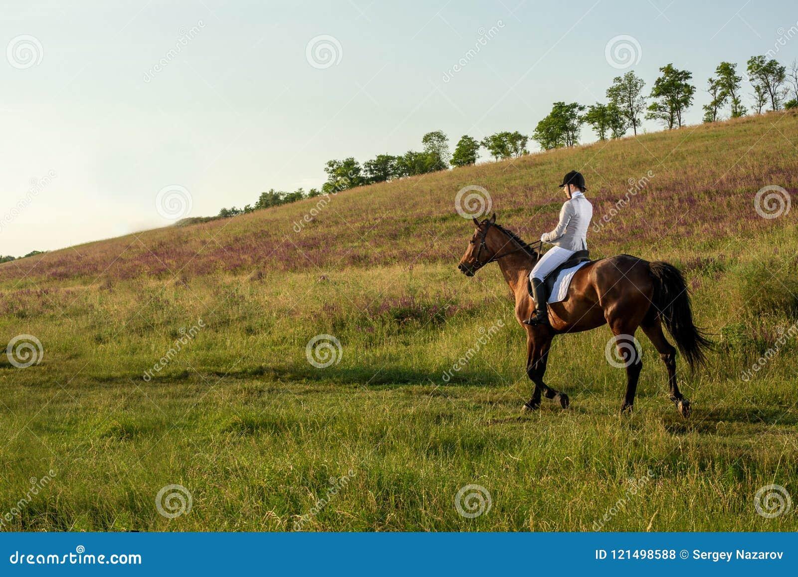 Frau pferd fotografie