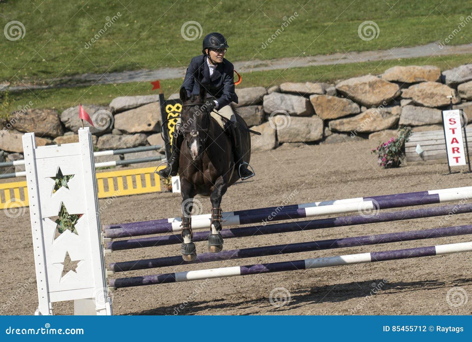 Reiter mit dem Pferdespringen