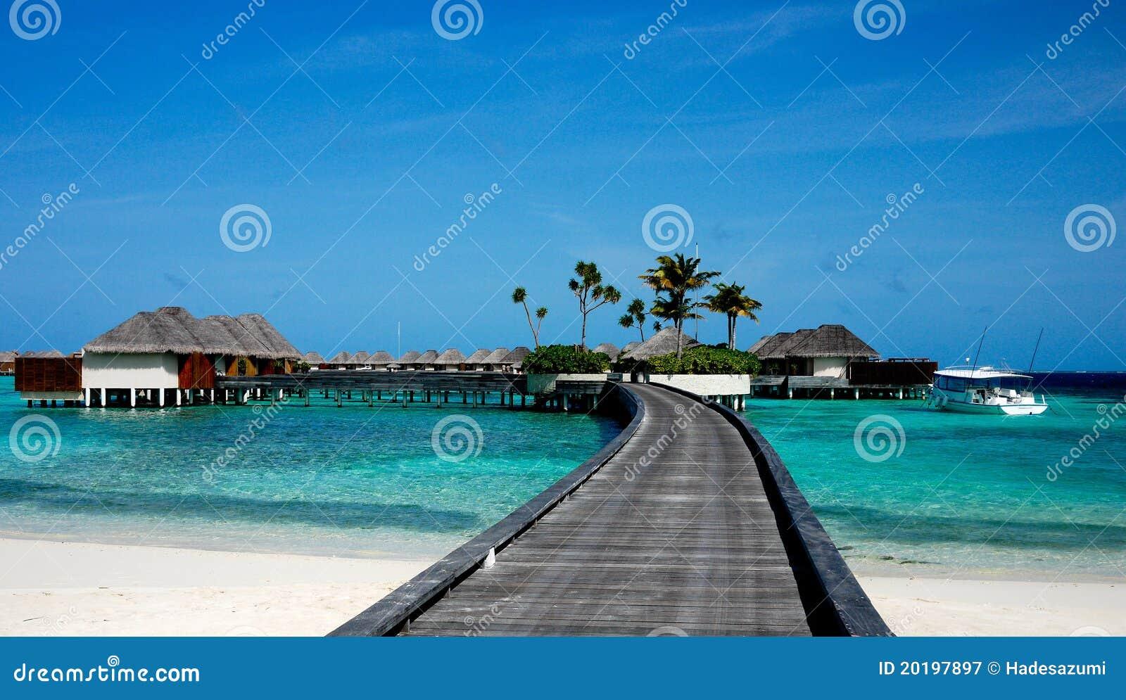 Relájese en maldives