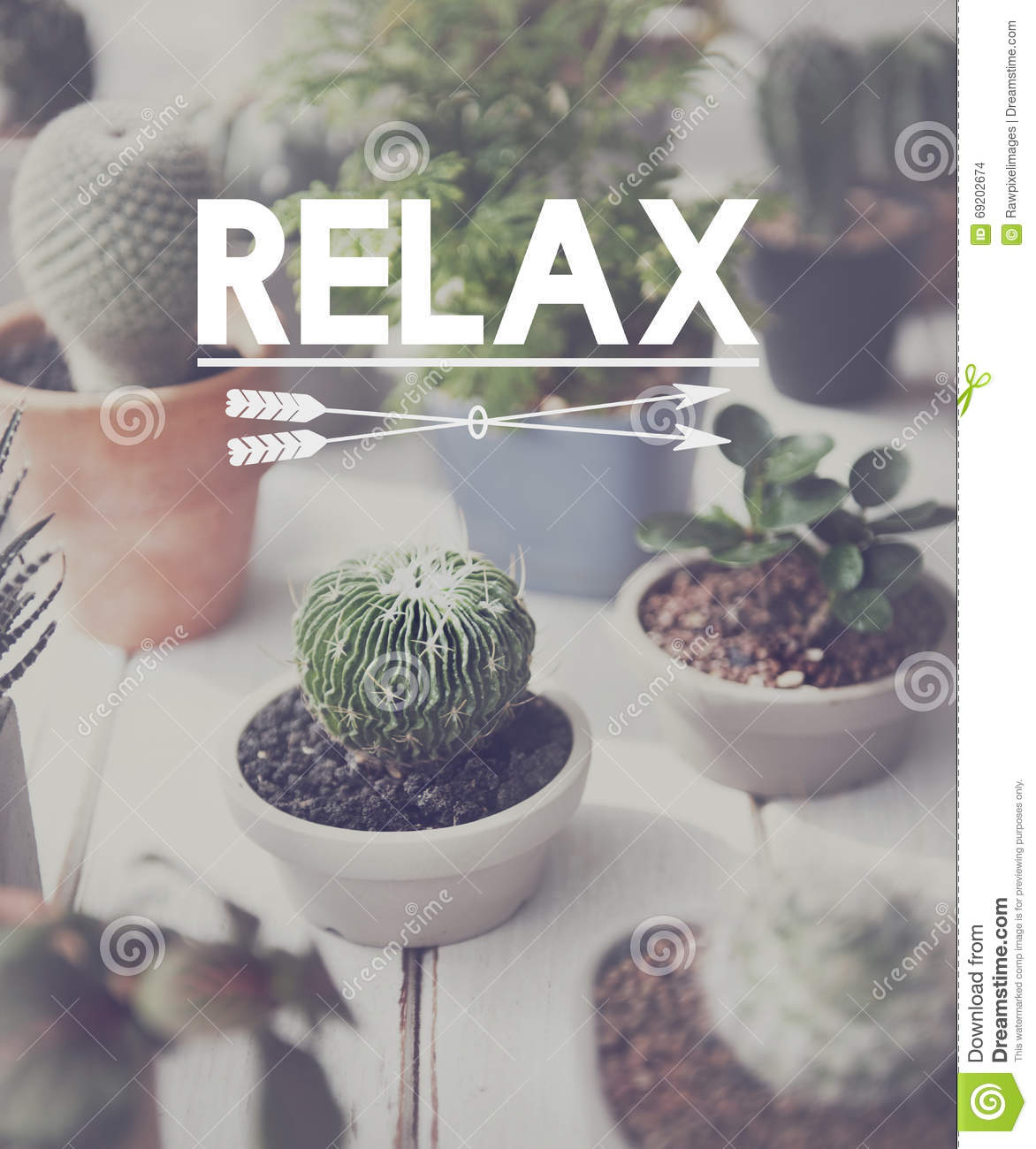 Download Relaxation Relax Chill Out Peace Resting Serenity Concept Stock Photo - Image of hobby, botany: 69202674