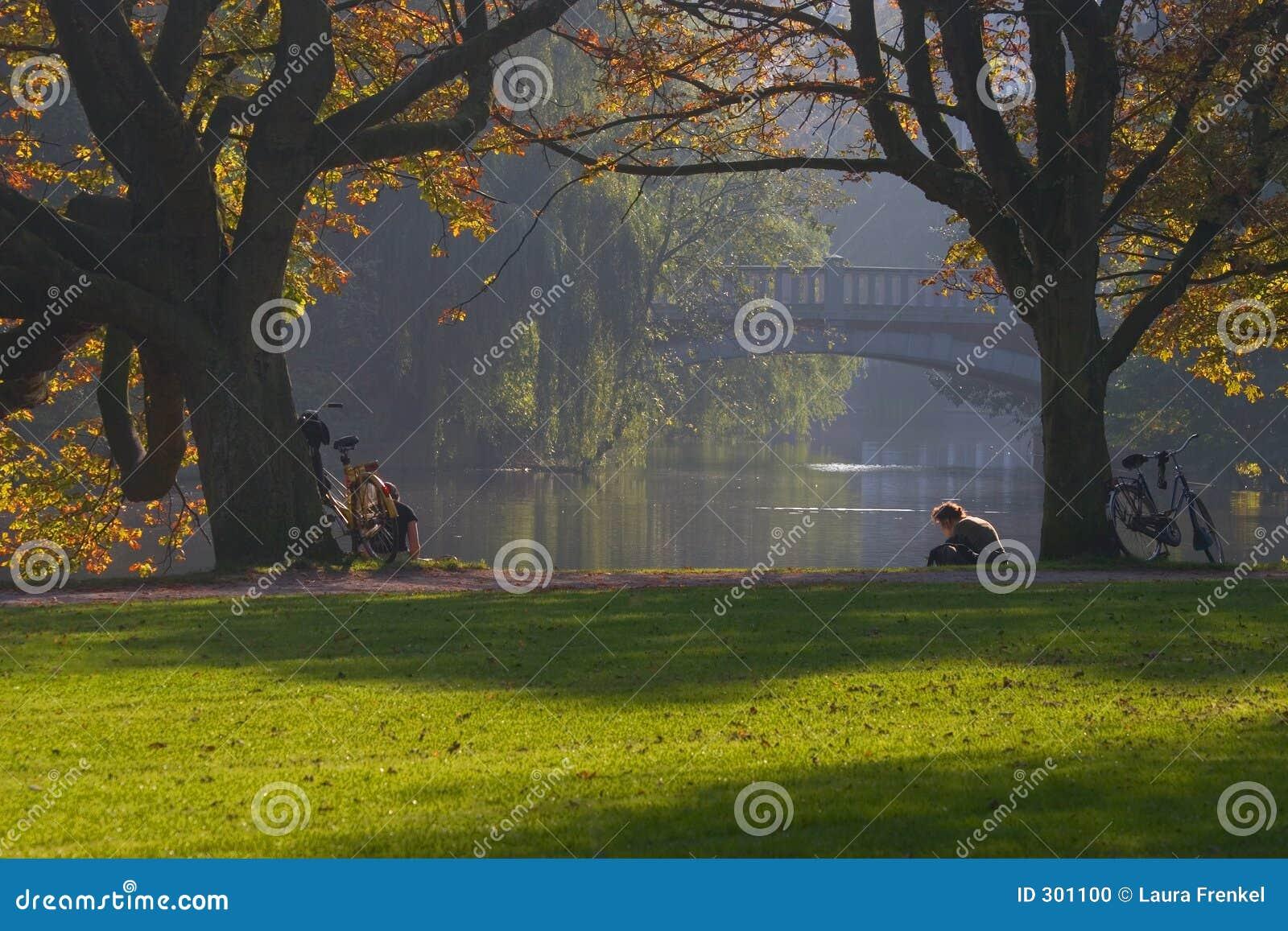 Relaxe no parque