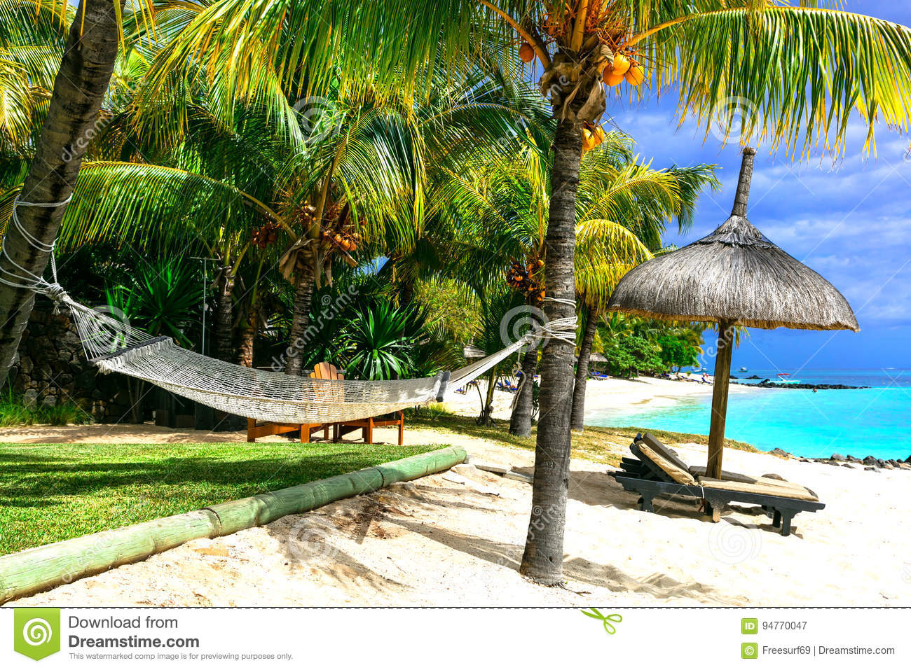 Relaxing Tropical Holidays Scenery With Hammock Under