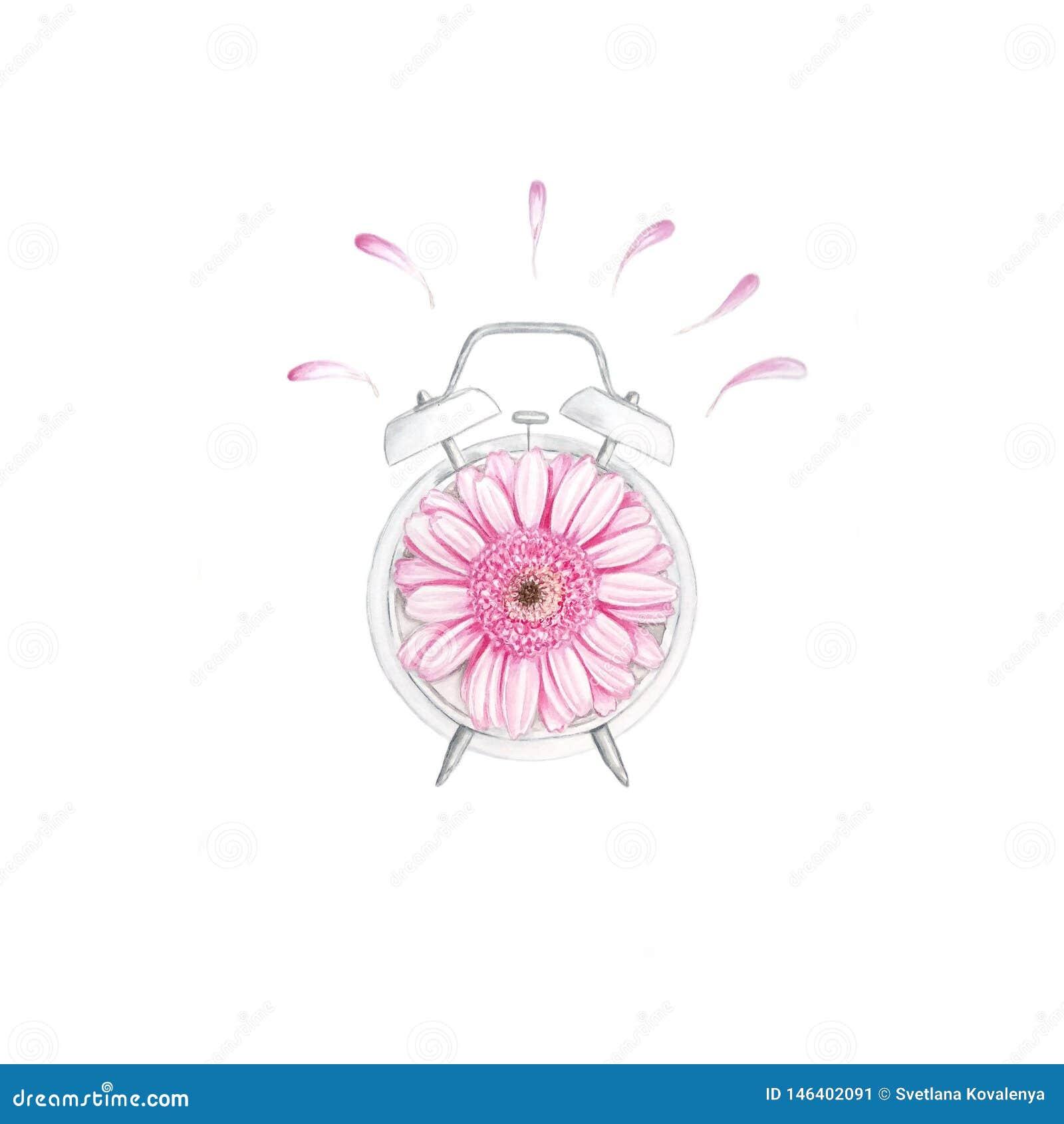 Reloj de la acuarela con la flor
