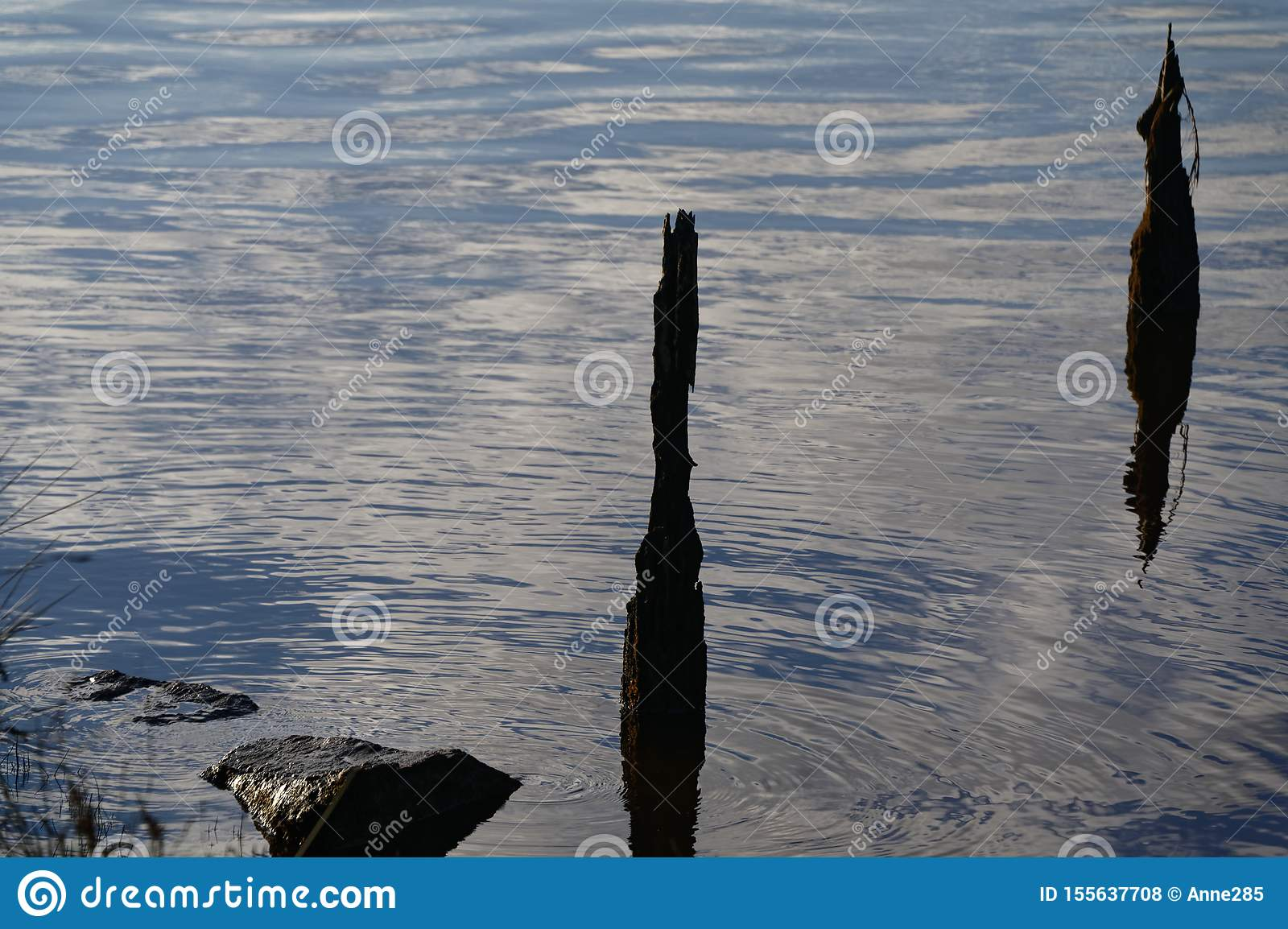 The remains of an old bridge sticks out of the water in the evening light
