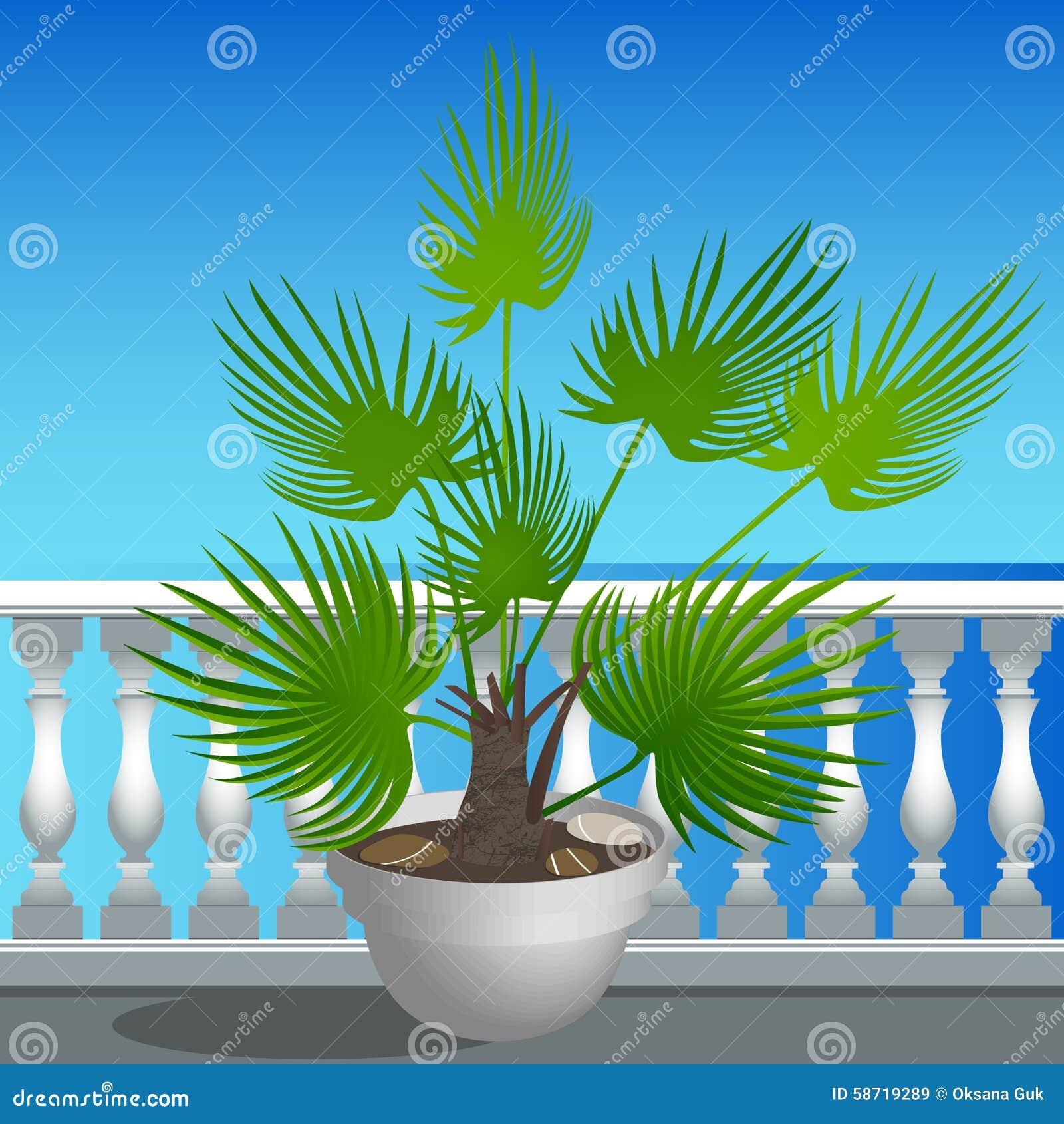 Remblai et un palmier dans un pot illustration de vecteur for Palmier dans pot