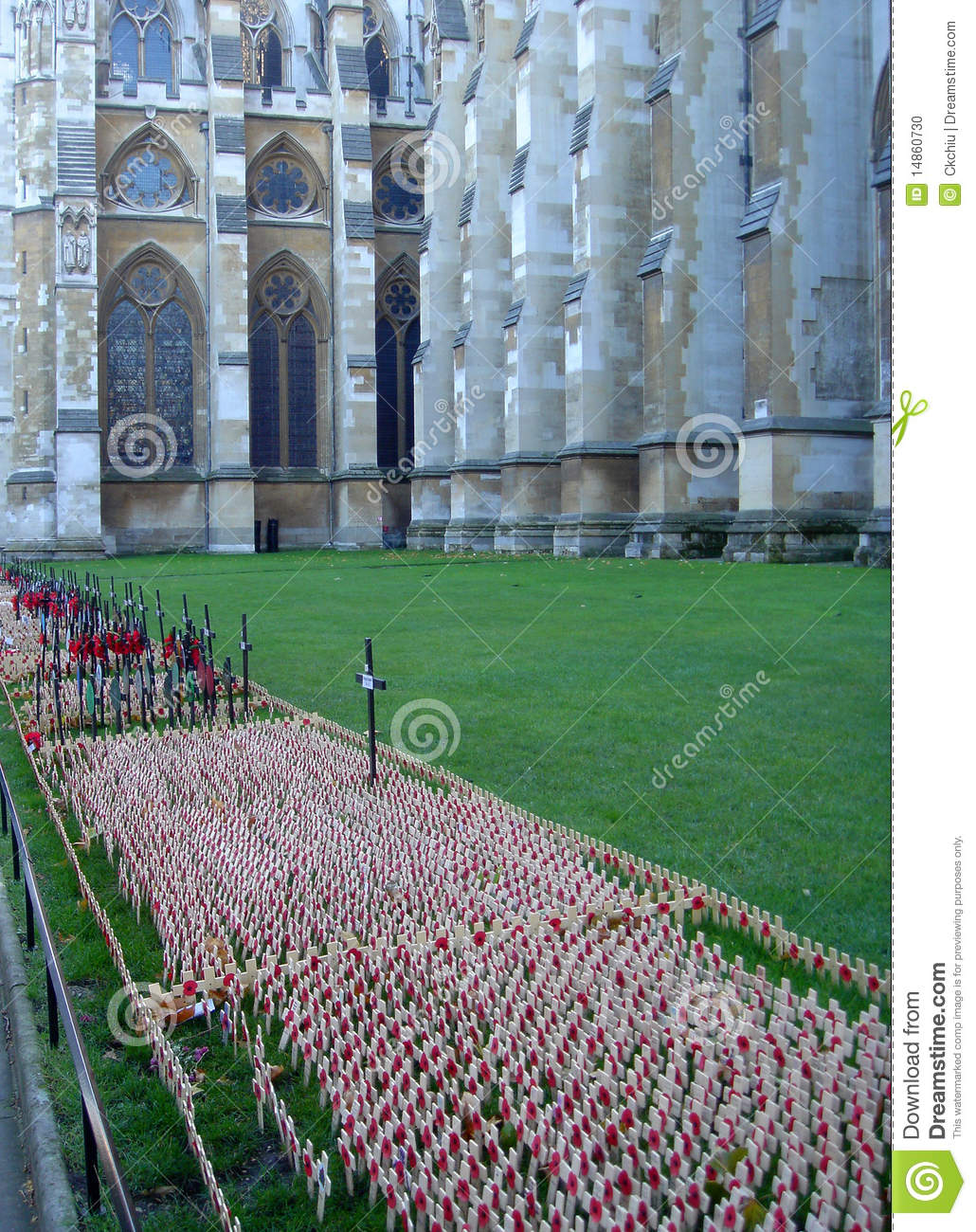 Remembrance Day 3