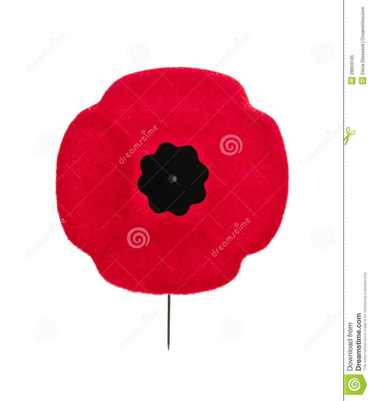 Remembrance Day Poppy Stock Image Image Of Symbolic 28803195