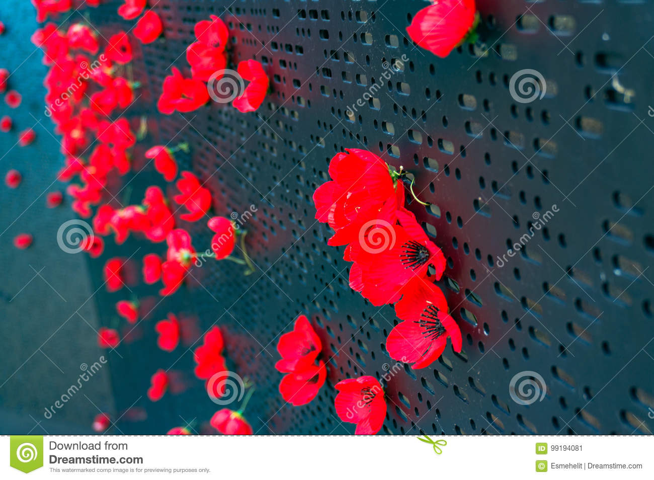 Remembrance Day Poppy Flowers Stock Image Image Of Black Veterans